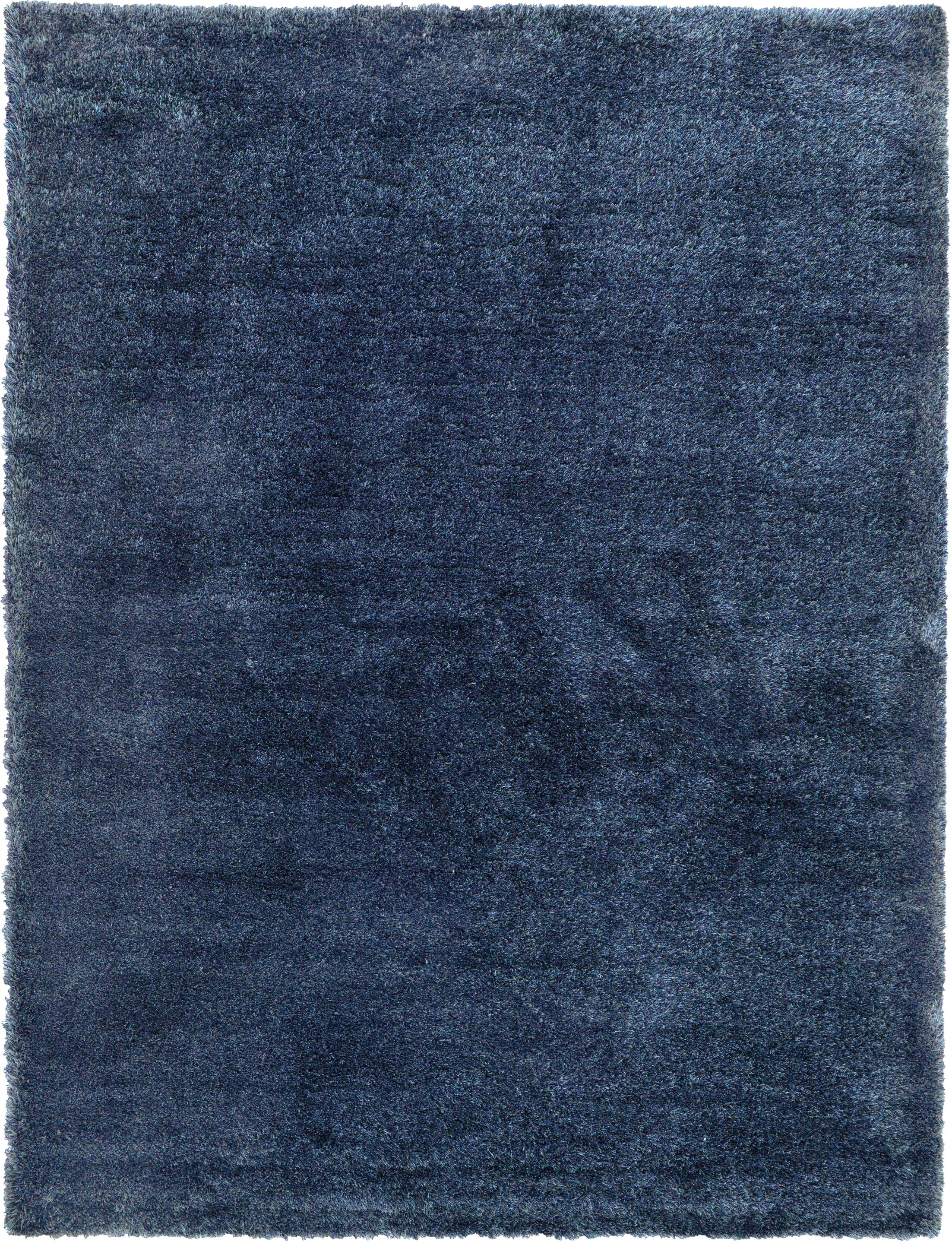 Evelyn Navy Blue Area Rug Rug Size: Rectangle 9' x 12'