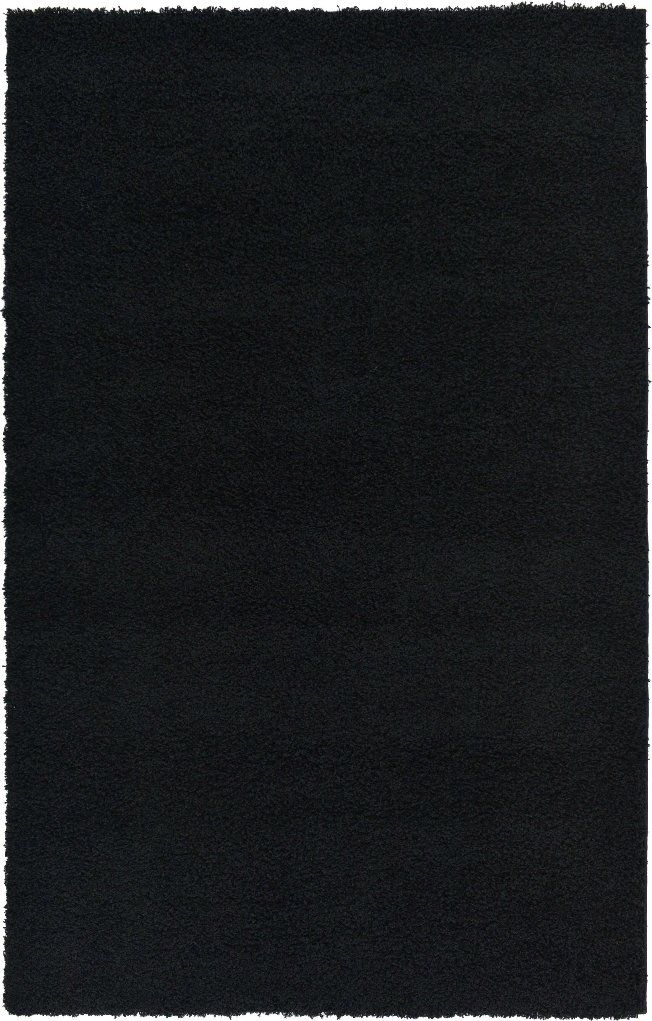Lilah Black Area Rug Rug Size: Rectangle 5' x 8'
