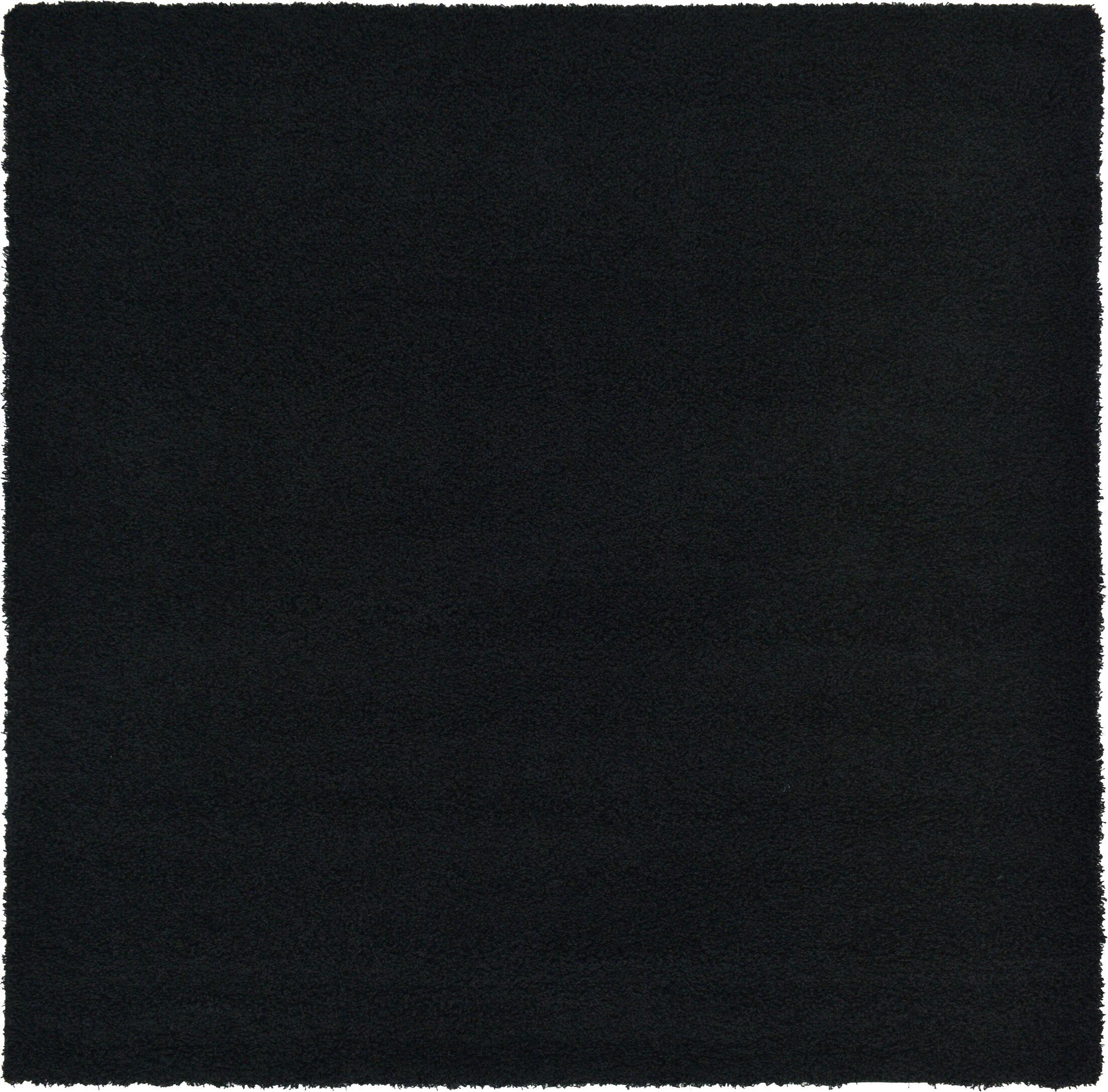 Lilah Black Area Rug Rug Size: Square 8'2