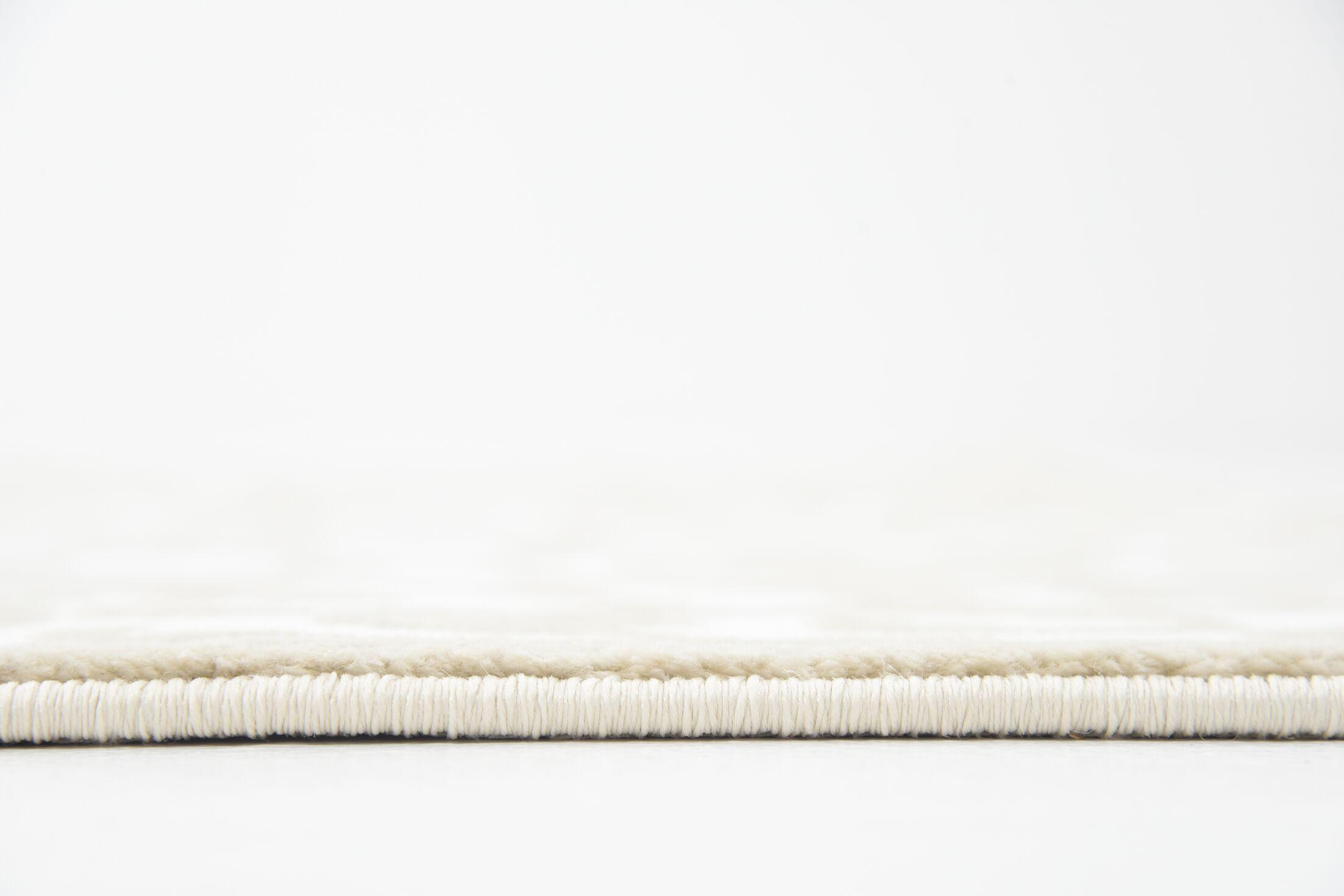 Mathieu Snow White/Beige Area Rug Rug Size: Rectangle 5' x 8'