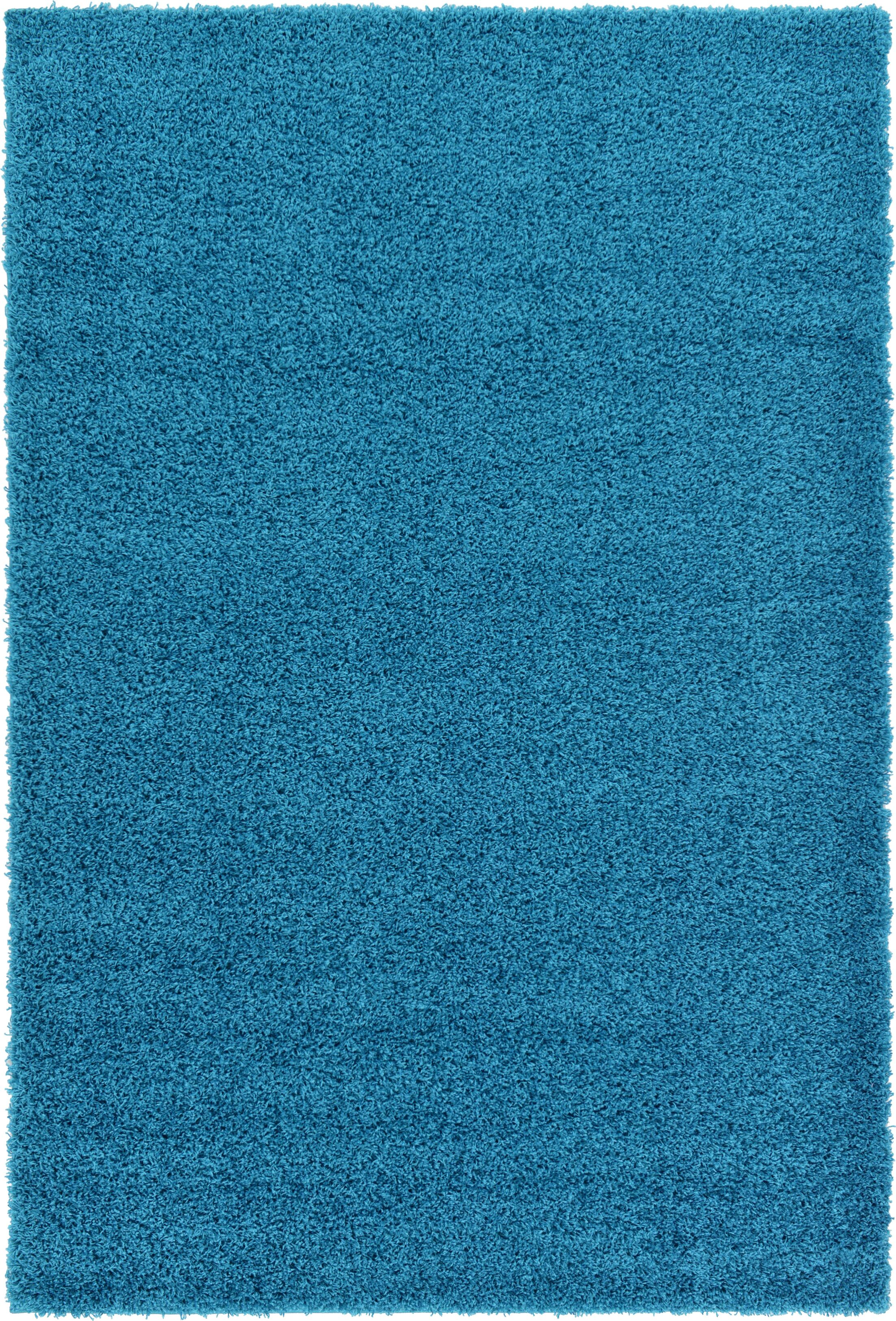 Madison Area Rug Rug Size: Runner 2'6