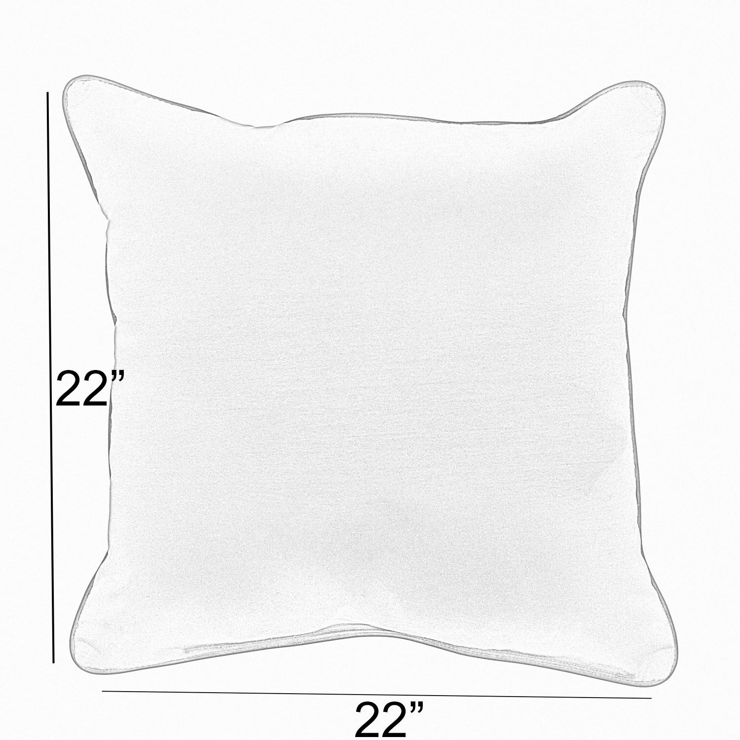Sarasota Sunbrella Outdoor Throw Pillow Size: 22