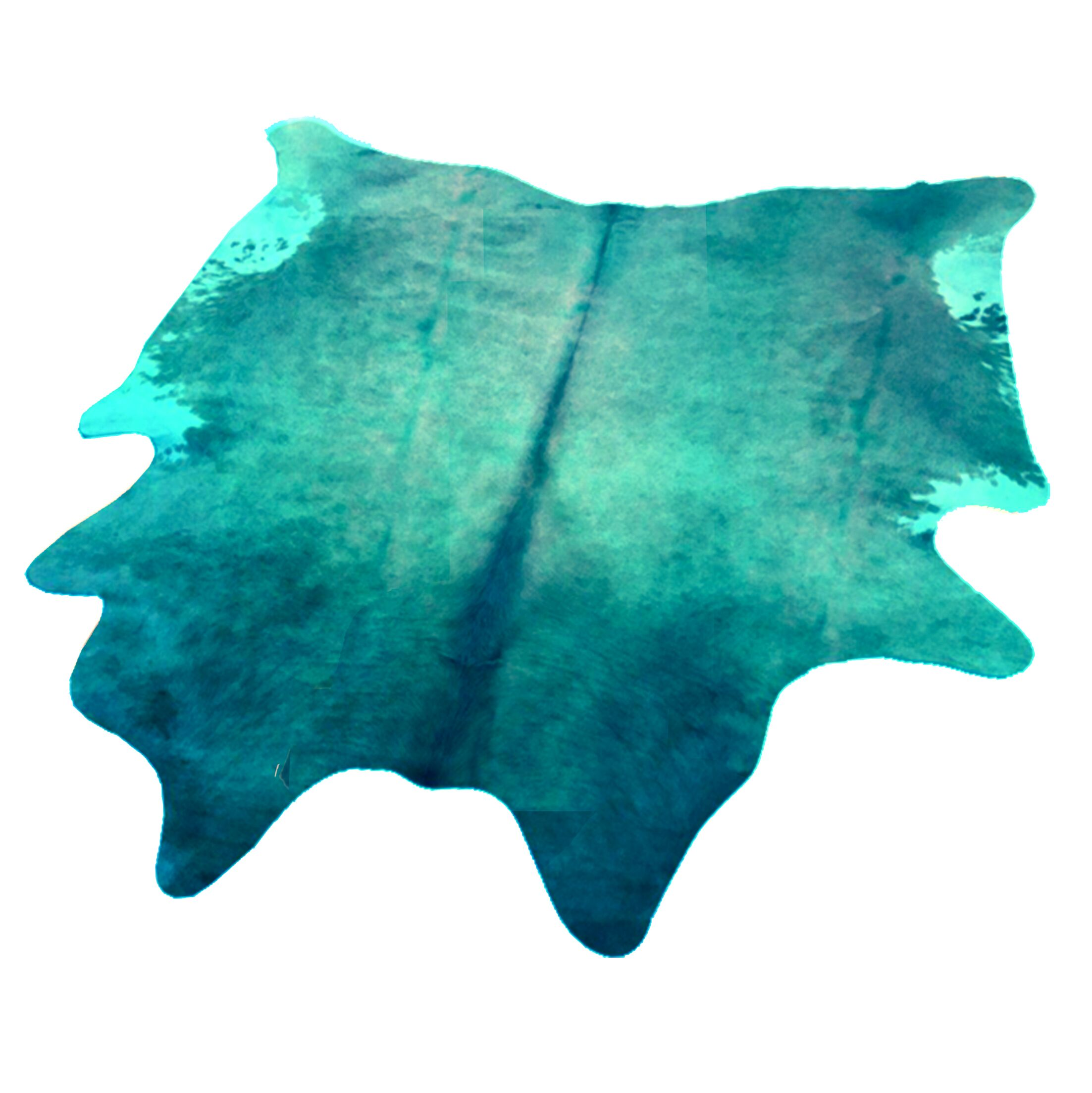 Whisnant Hand Woven Cowhide Turquoise Indoor Area Rug