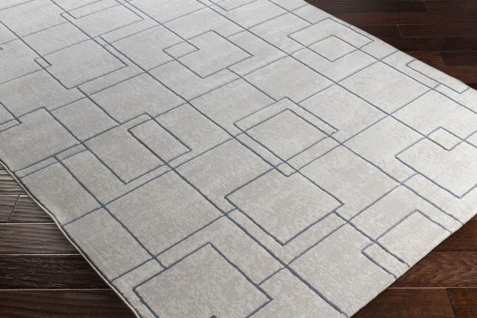 Chacon Modern White/Light Gray Area Rug Rug Size: Runner 2'7
