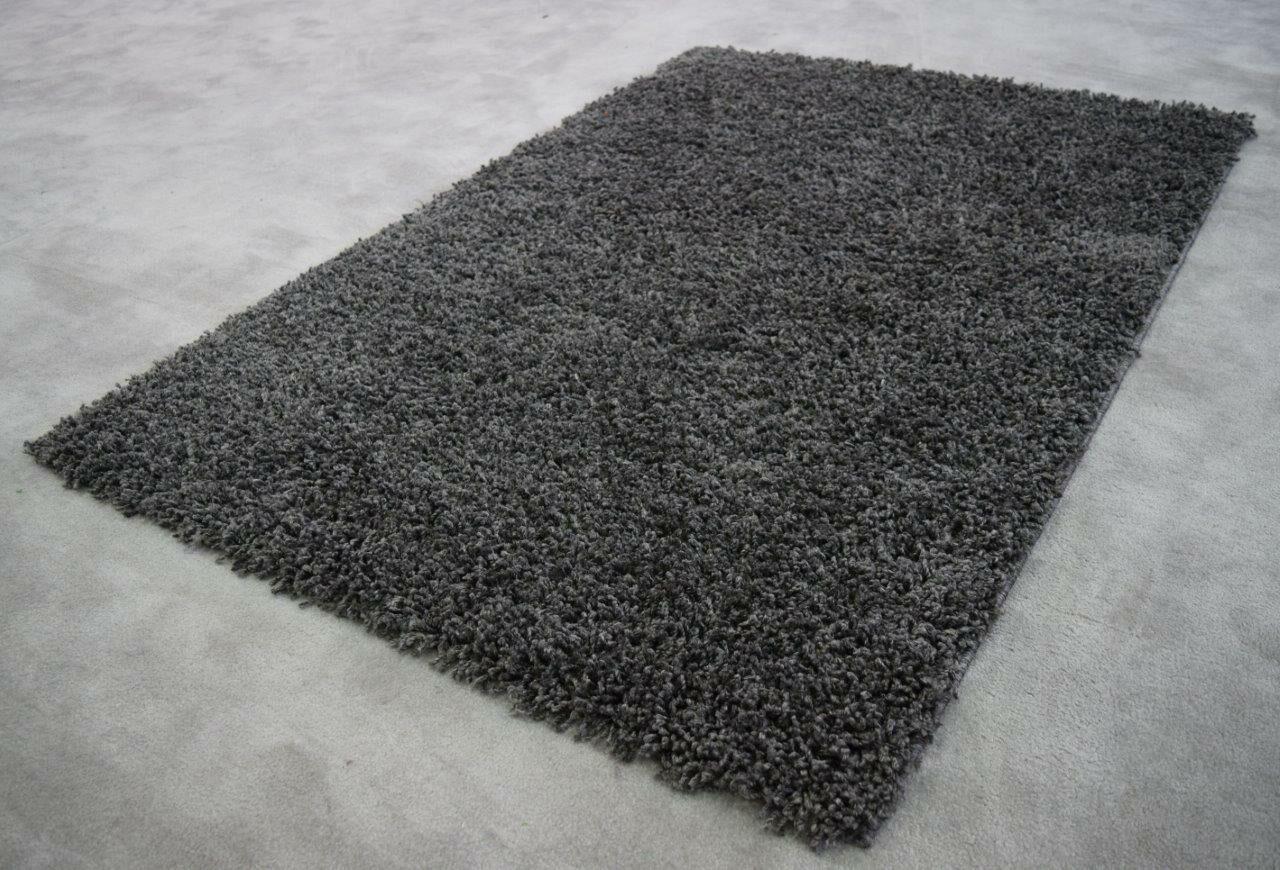 Filton Dark Gray Area Rug Rug Size: Rectangle 2' x 3'