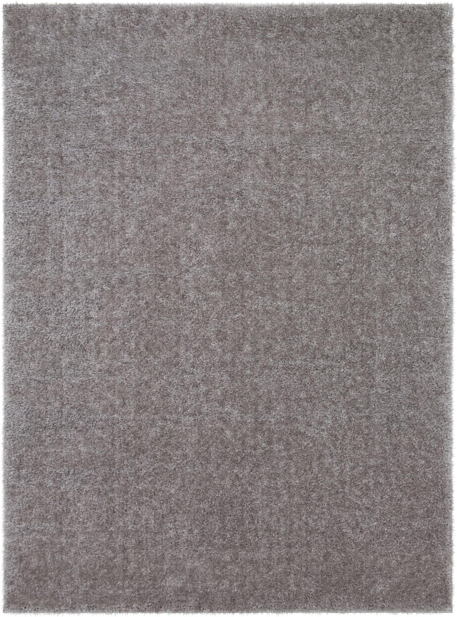 Carlos Shag Plush Taupe Area Rug Rug Size: Rectangle 2' x 3'