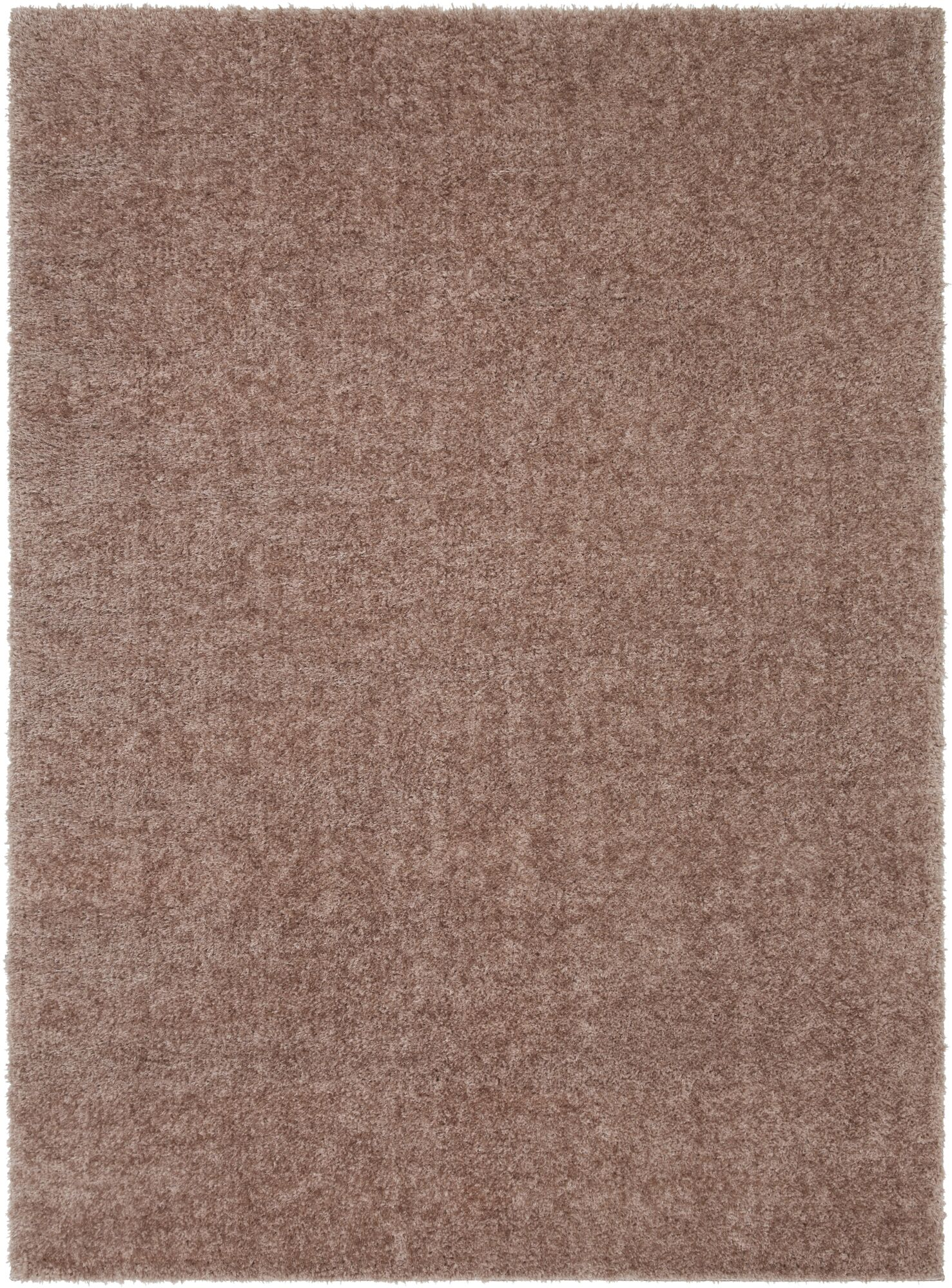 Carlos Shag Plush Camel Area Rug Rug Size: Rectangle 5'3
