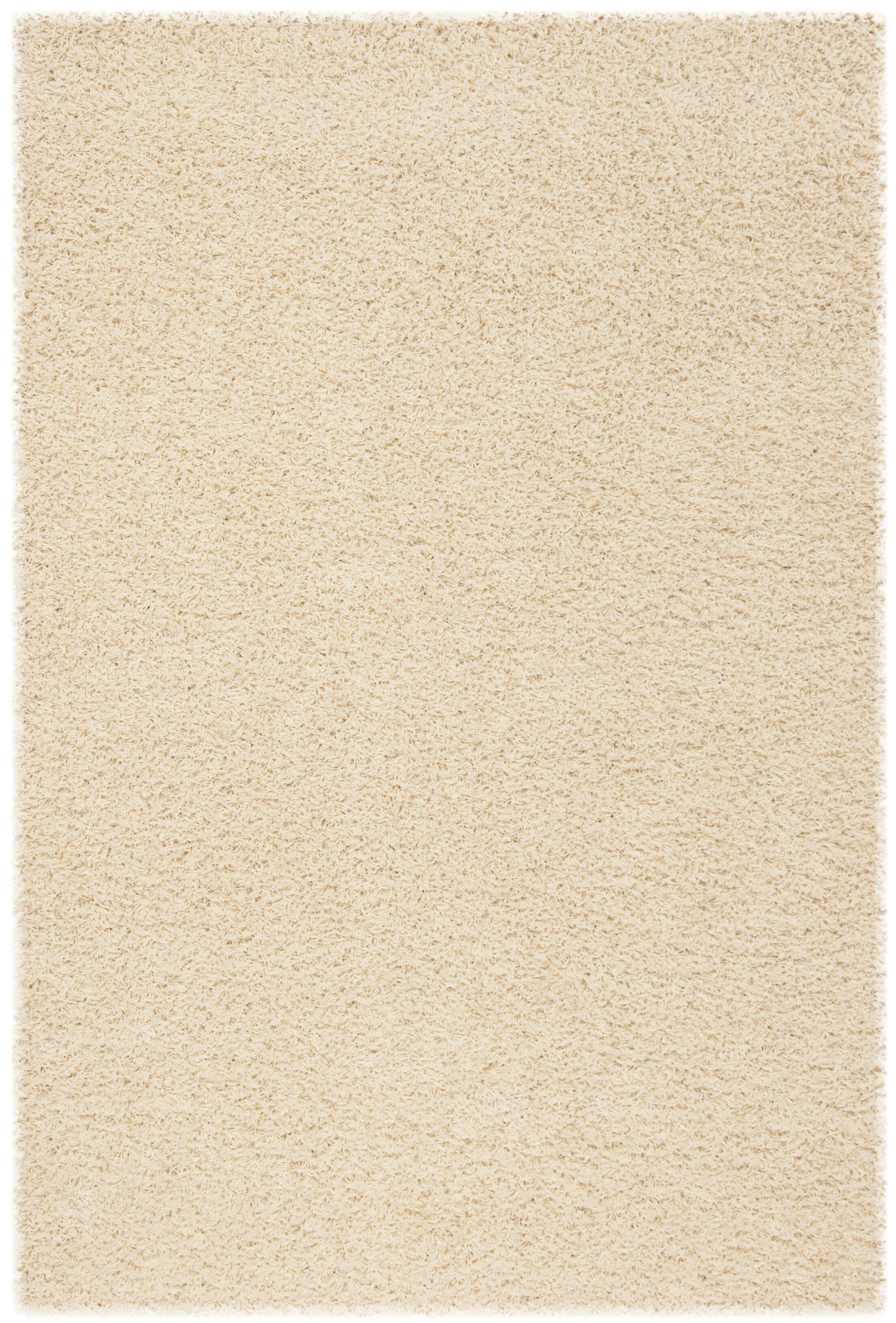 Fornax Shag Ivory Area Rug Rug Size: Rectangle 4' x 6'