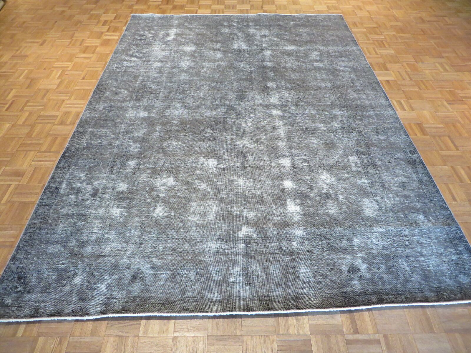 One-of-a-Kind Padro Hand-Knotted Light Gray Area Rug
