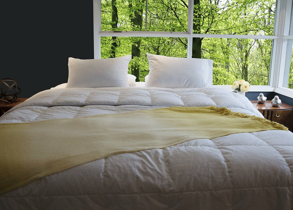 Antimicrobial Goose All Season Silver Down Comforter Size: Queen
