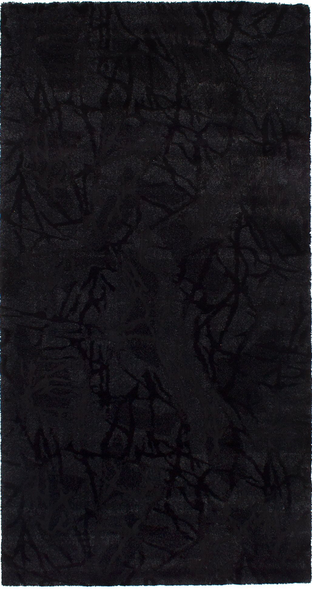 Purmerend Black Area Rug Rug Size: Rectangle 5'6