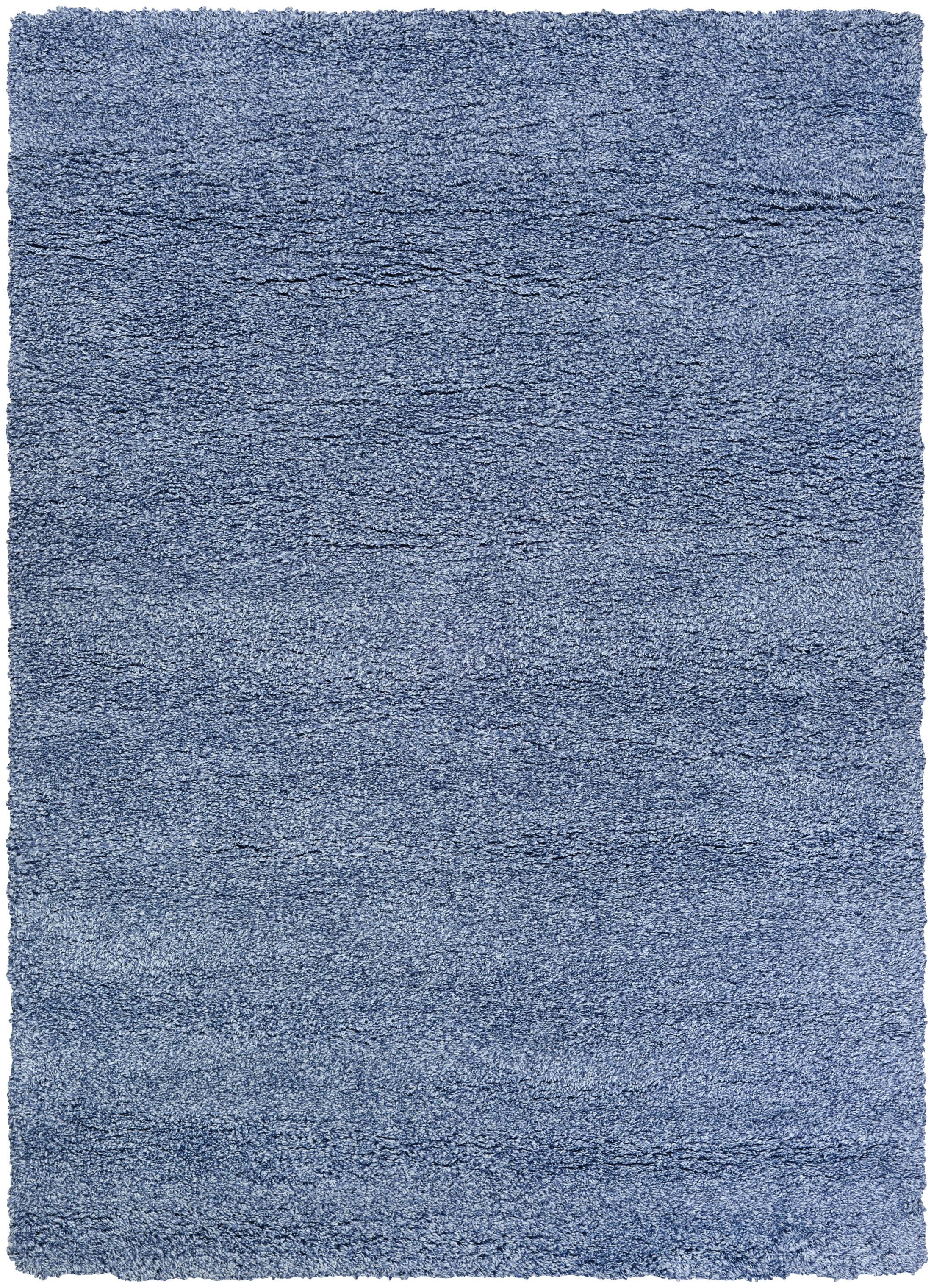 Risinger Light Blue Area Rug Rug Size: Rectangle 5'3