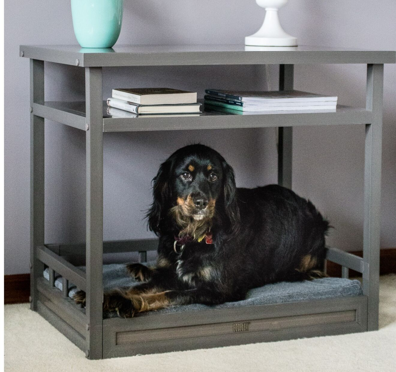 Echo Dog Bed with Nightstand and Cushion Color: Gray