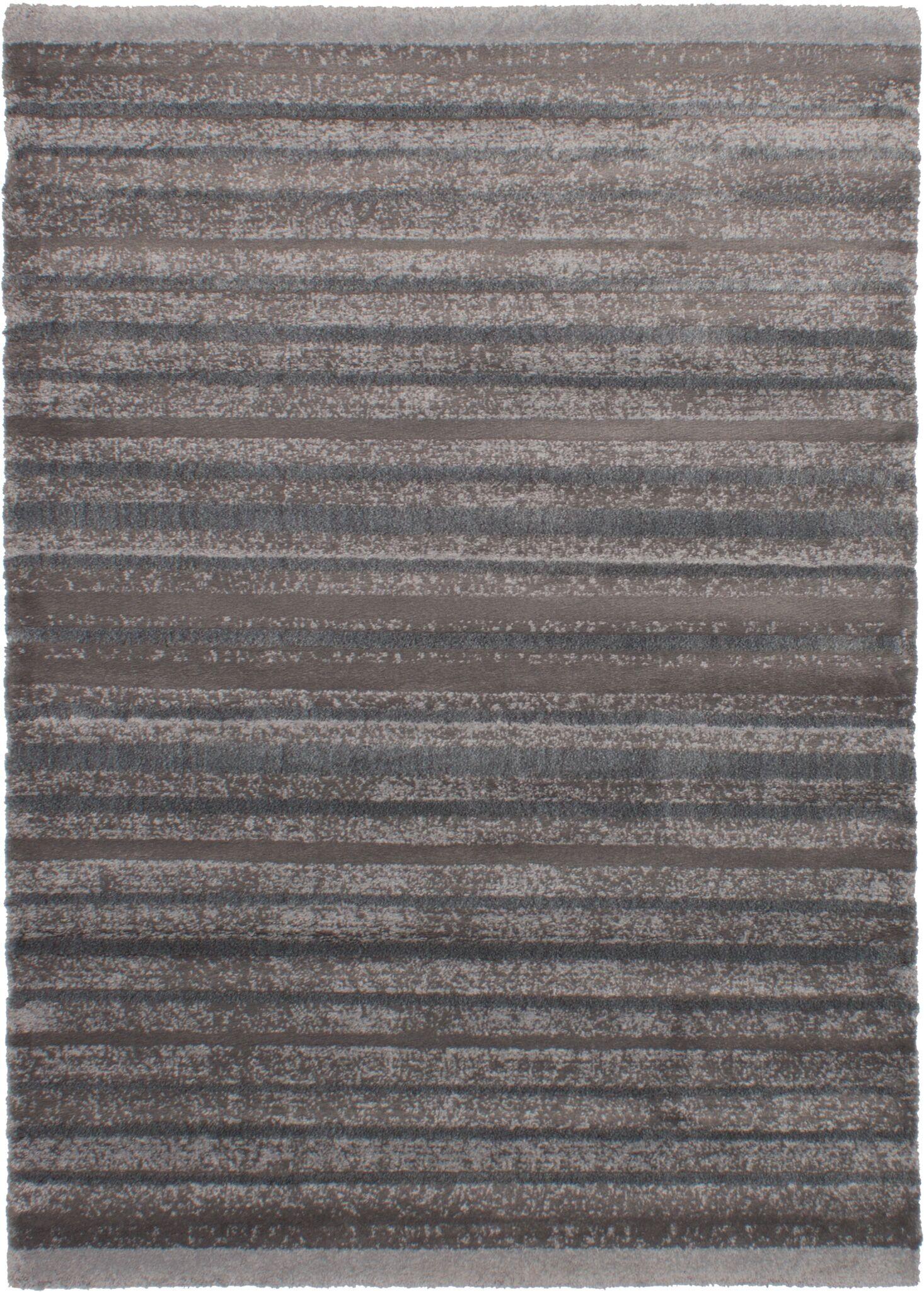 Groner Dark Gray Area Rug