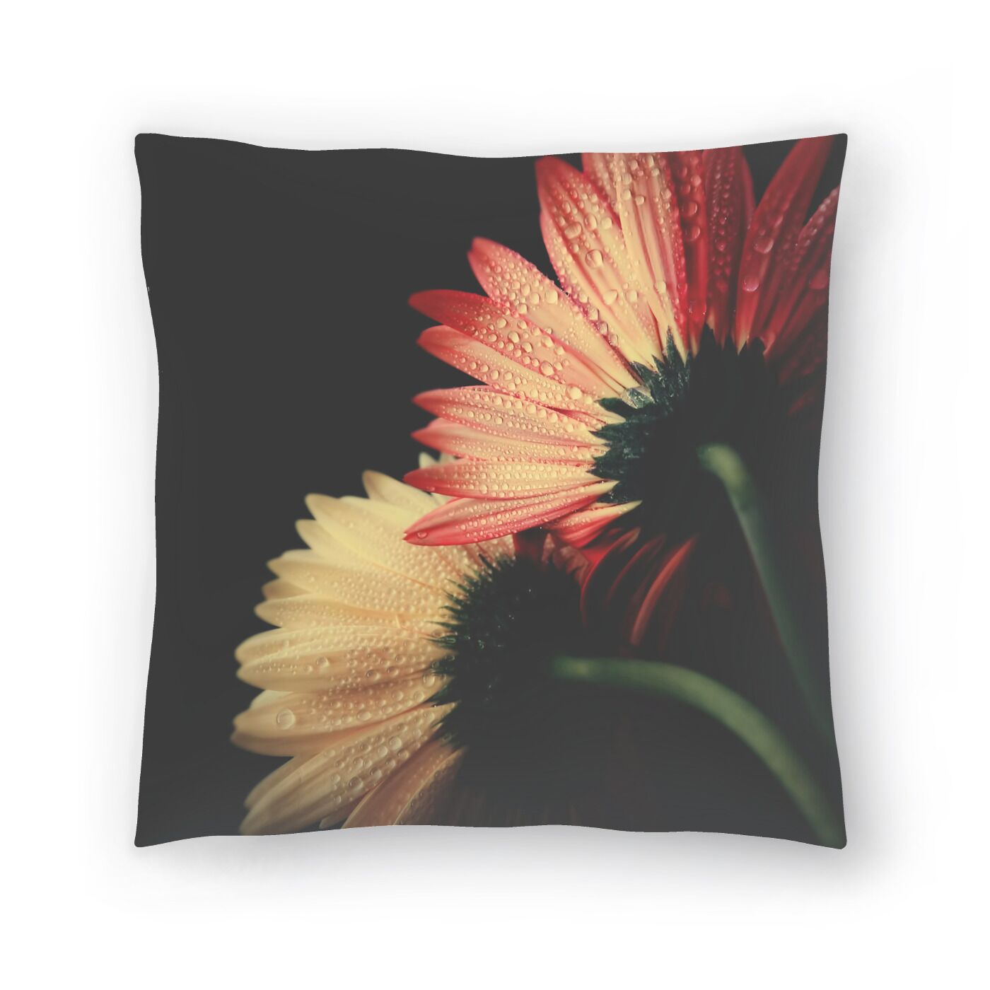 Looking Back Throw Pillow Size: 14