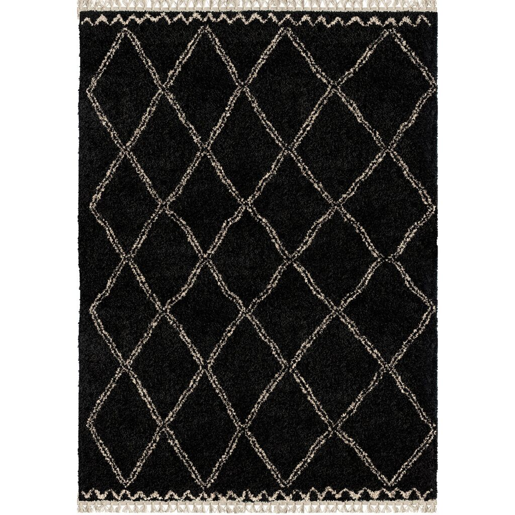 Darren Trellis Black Area Rug Rug Size: Rectangle 9' x 13'