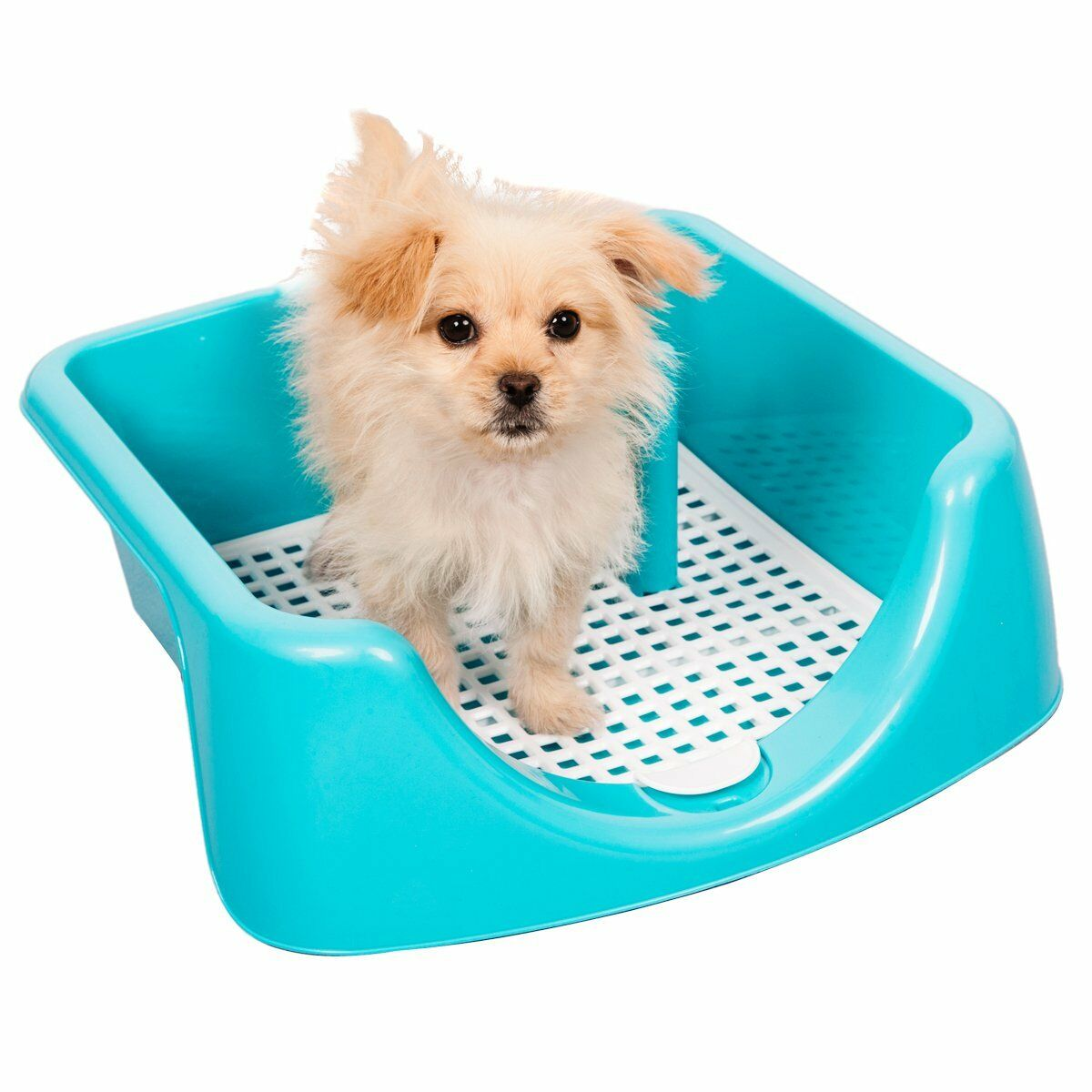 High Fence Dog Training Tray with Post Included