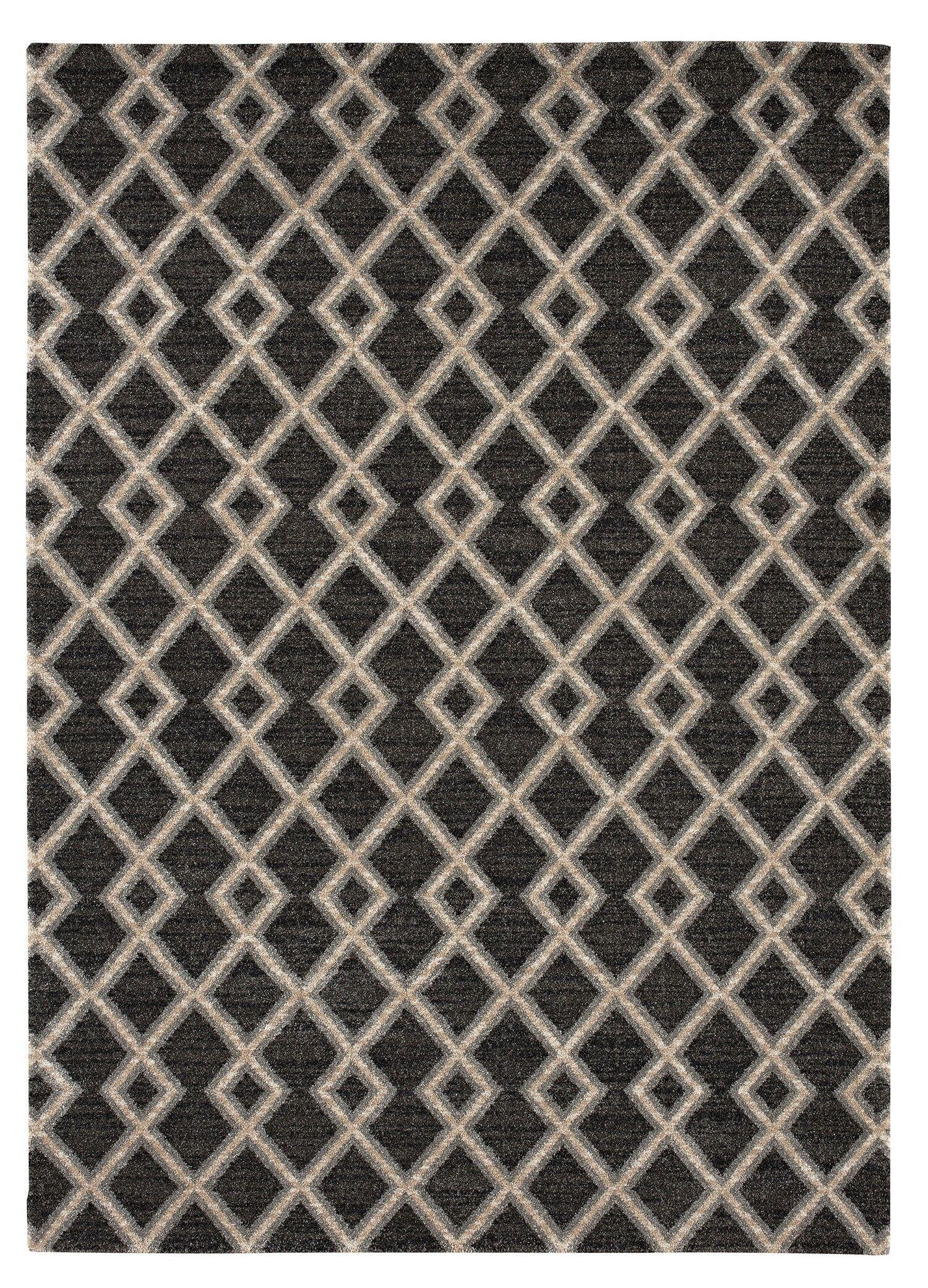 Juhasz Dark Brown Area Rug Rug Size: Rectangle 5'3