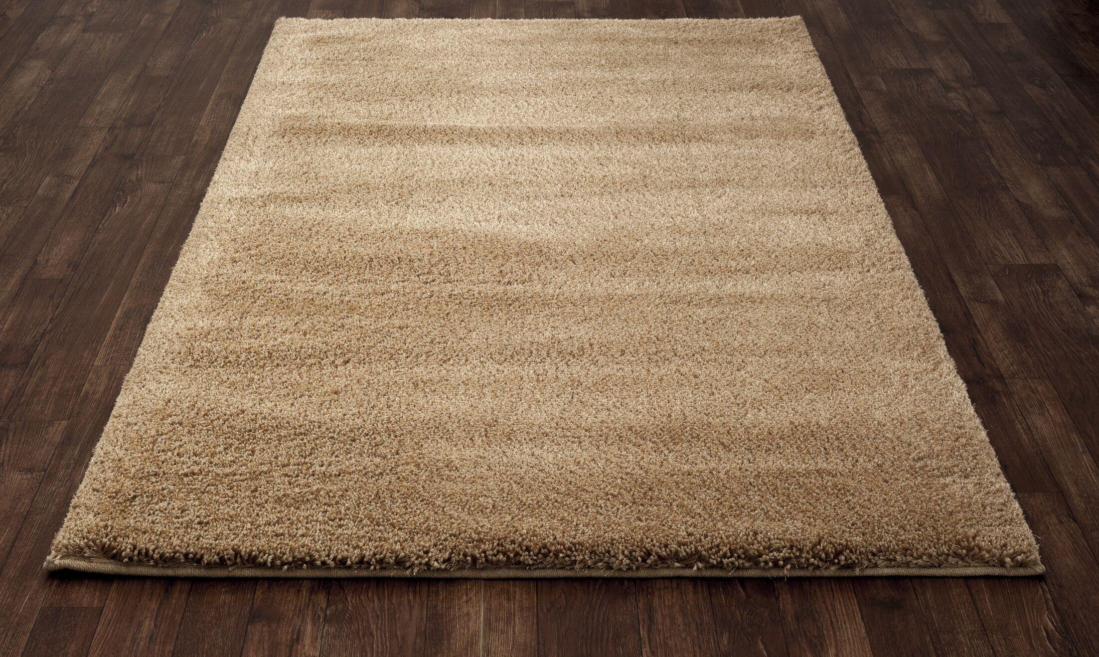 Hickey Plush Pile Shag Desert Sand Area Rug Rug Size: Rectangle 5'3