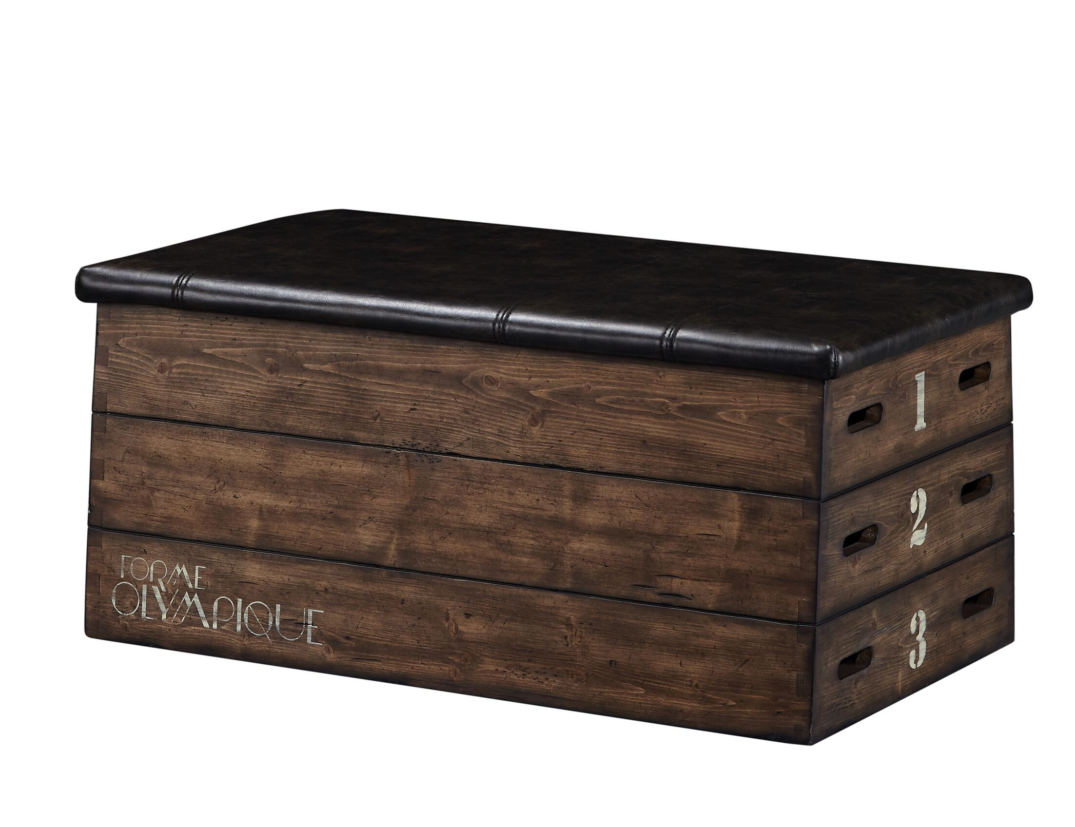 Mcbee Coffee Table with Storage