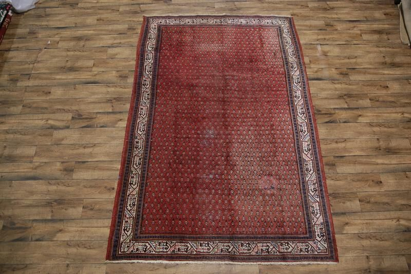 One-of-a-Kind Botehmir Persian Hand-Knotted 6'1