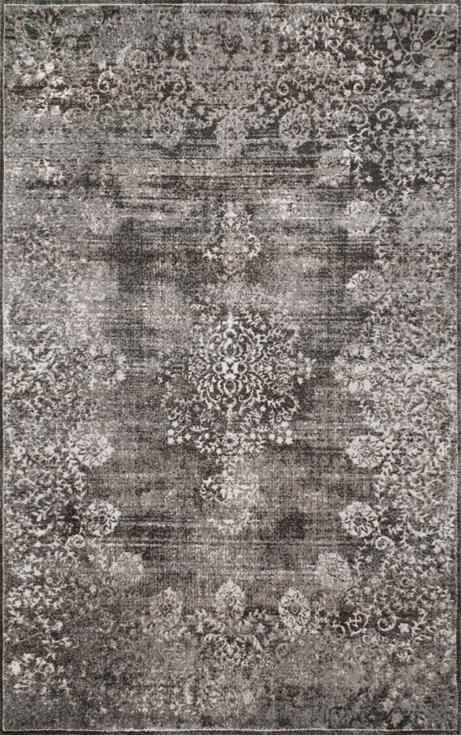 Paola Gray Area Rug Rug Size: Rectangle 4' x 6'