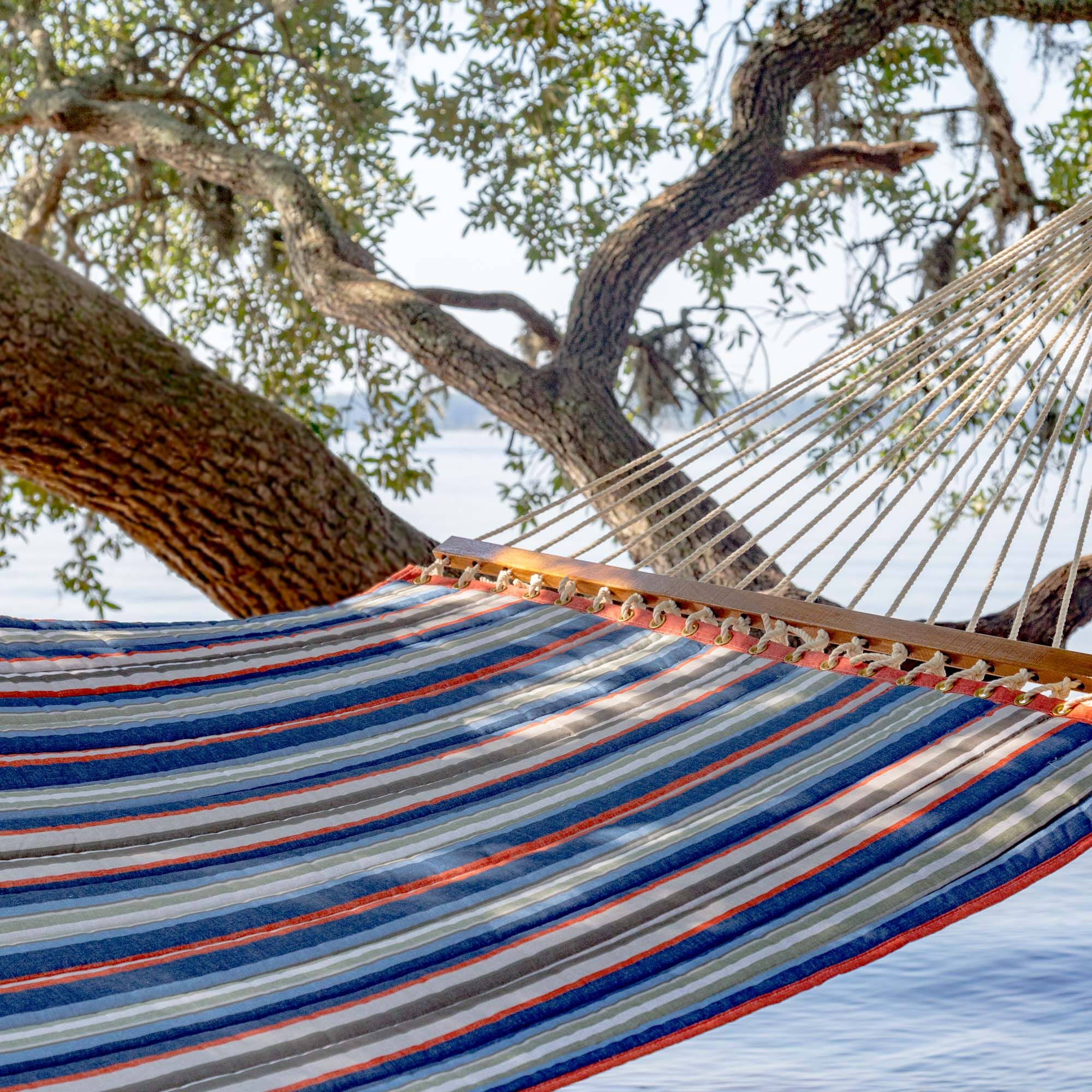 Lizeth Double Tree Hammock Color: Blue