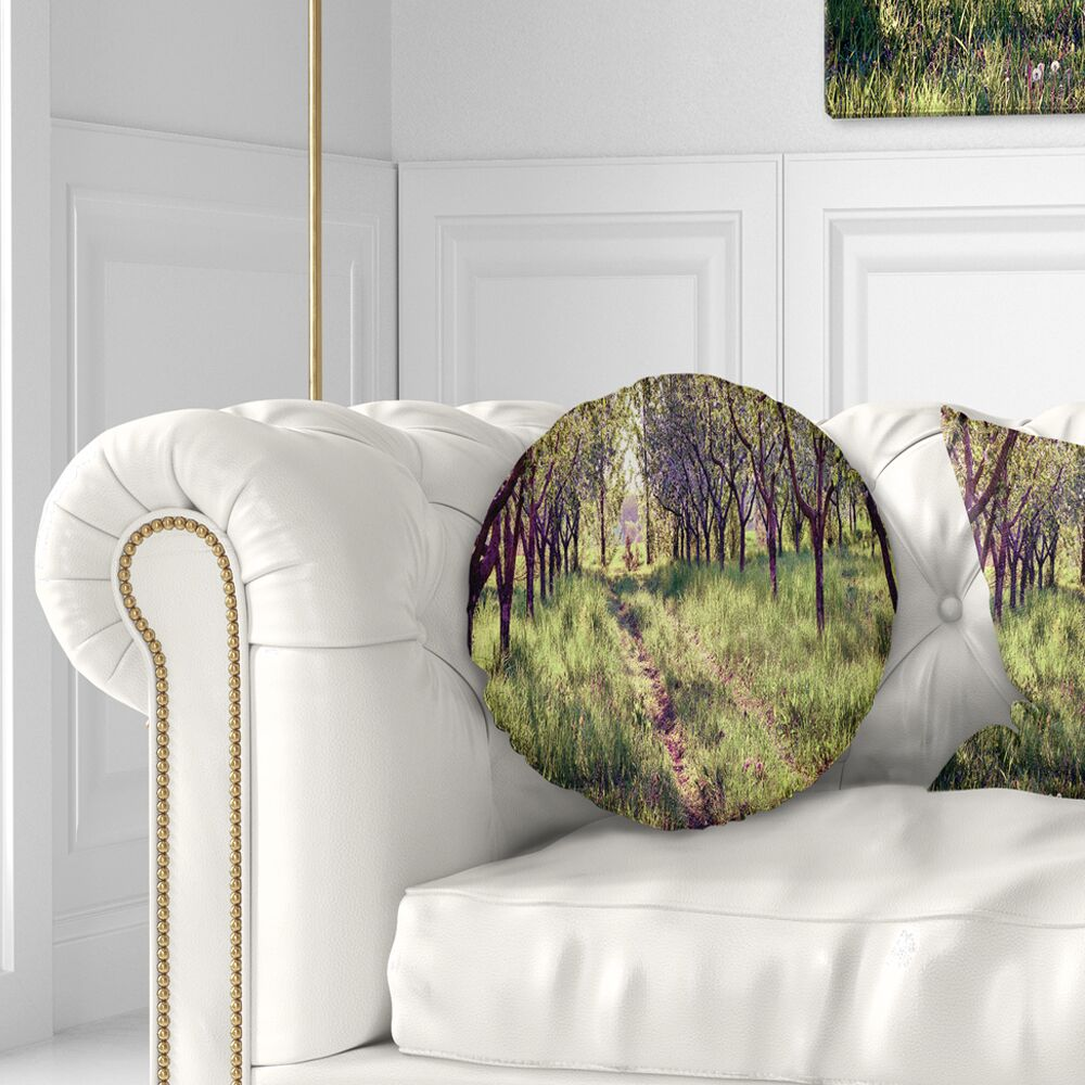Photography Blossom Apples Garden Throw Pillow Size: 16
