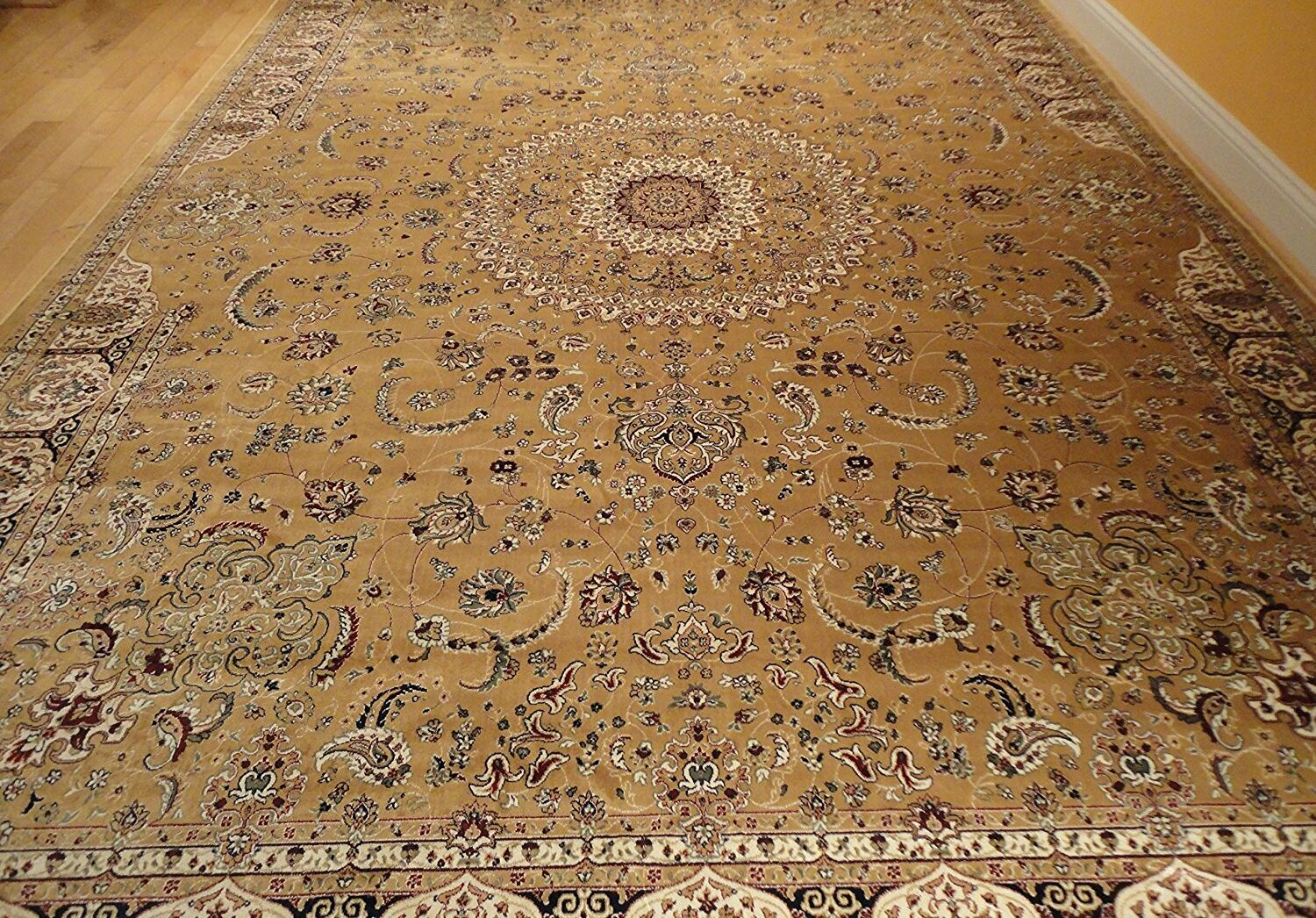 Shanelle Living Room Hand-Knotted Silk Gold Area Rug Rug Size: Rectangle 6'.5