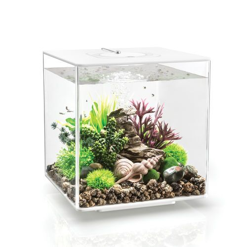 MCR LED Aquarium Tank Size: 13.6