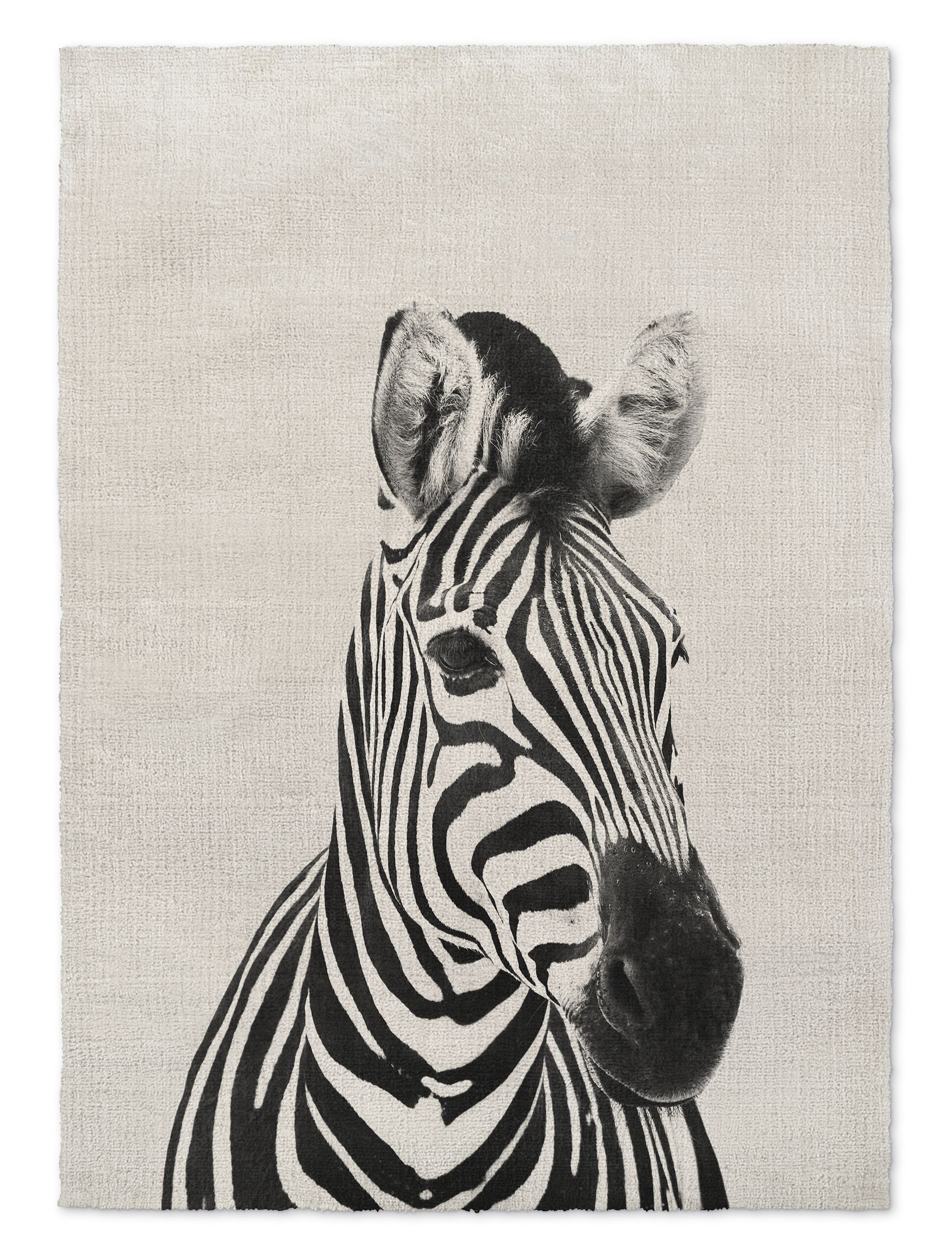 Millender Zebra Gray/Black Area Rug Size: Rectangle 8' x 10'