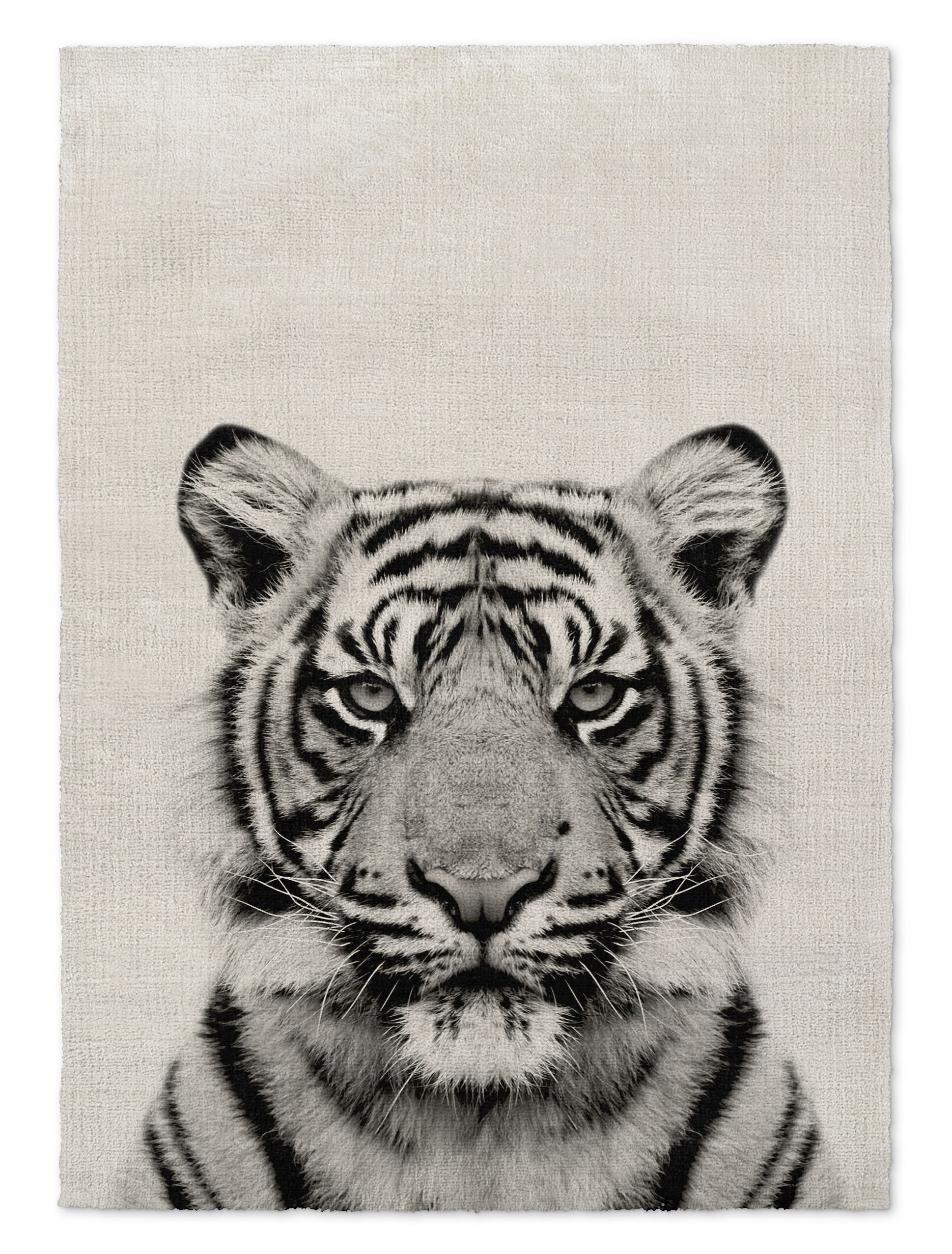 Milliman Tiger Gray Area Rug Size: Rectangle 8' x 10'