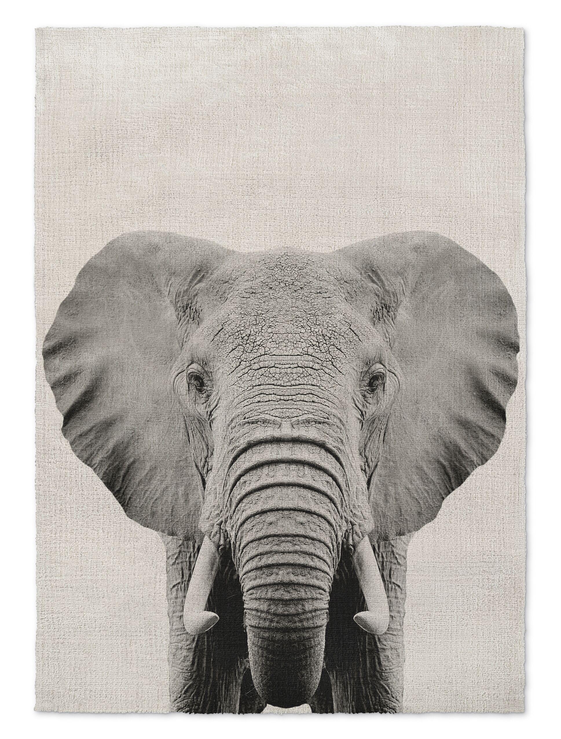 Millis Elephant Gray/Black Area Rug Size: Rectangle 2' x 3'