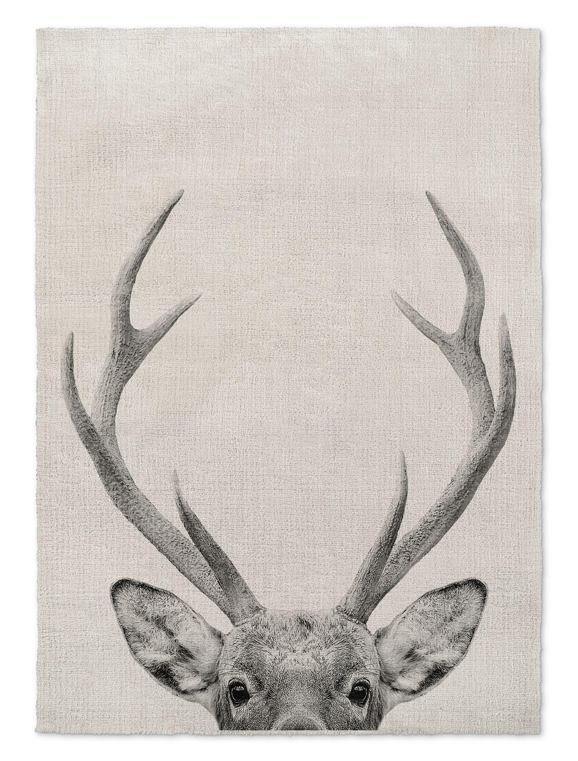 Millman Deer Gray Area Rug Size: Rectangle 3' x 5'