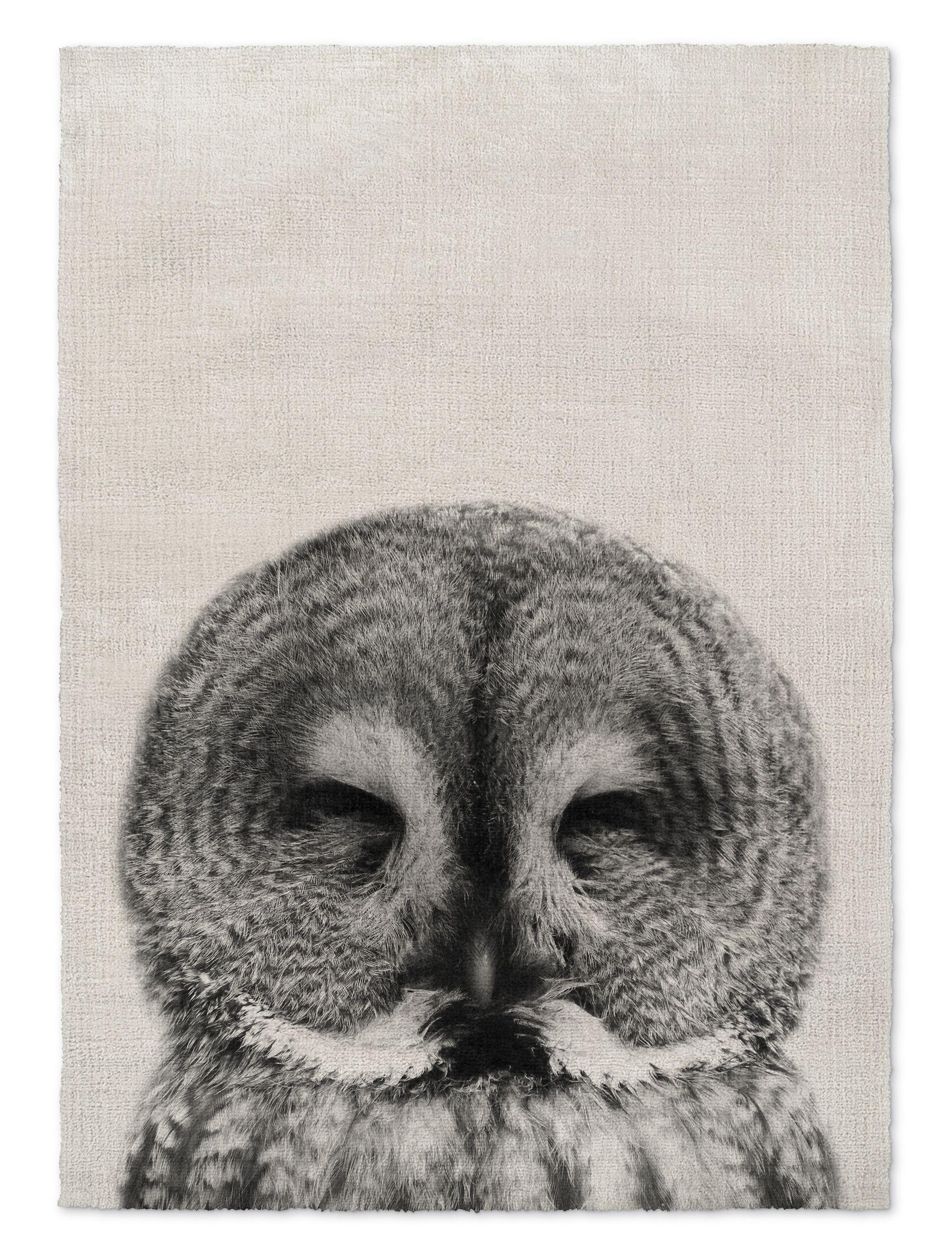 Millner Owl Gray/Black Area Rug Size: Rectangle 3' x 5'