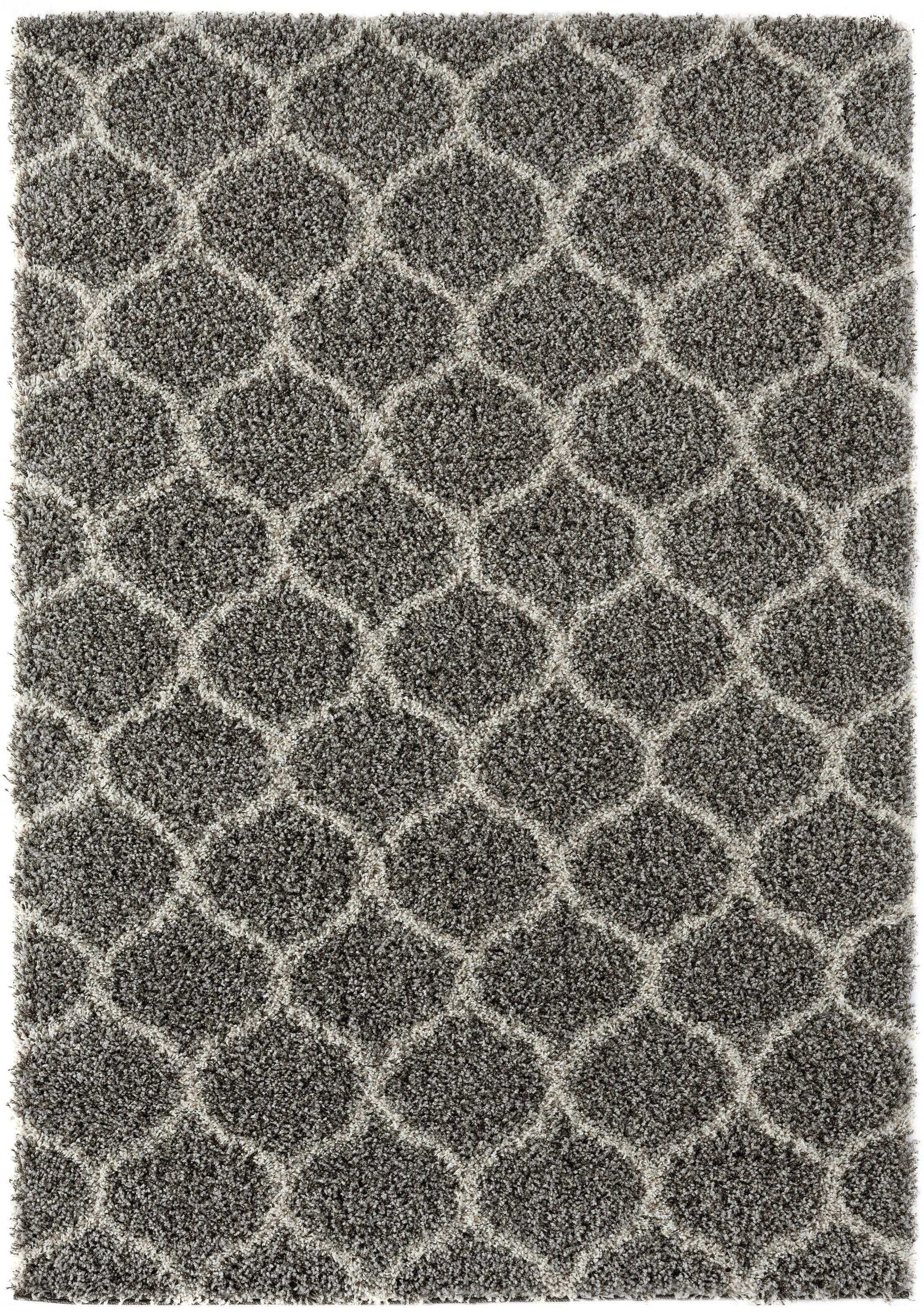 Langner Gray Area Rug Rug Size: Rectangle 5' x 7'2