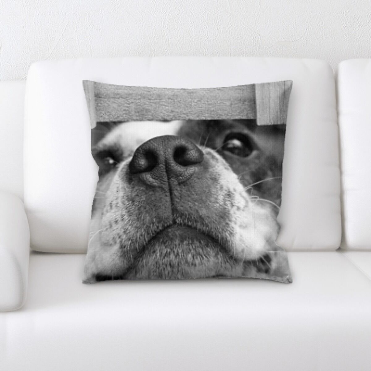 Aiden Dog Portrait (3) Throw Pillow