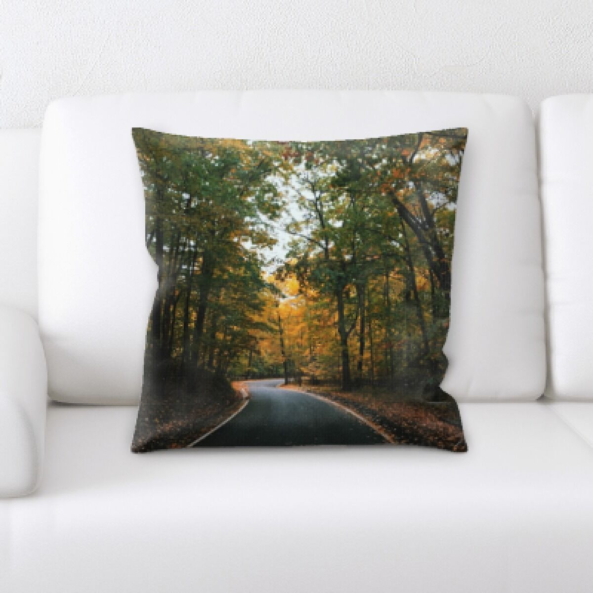 Racine A Road to Many Places (104) Throw Pillow