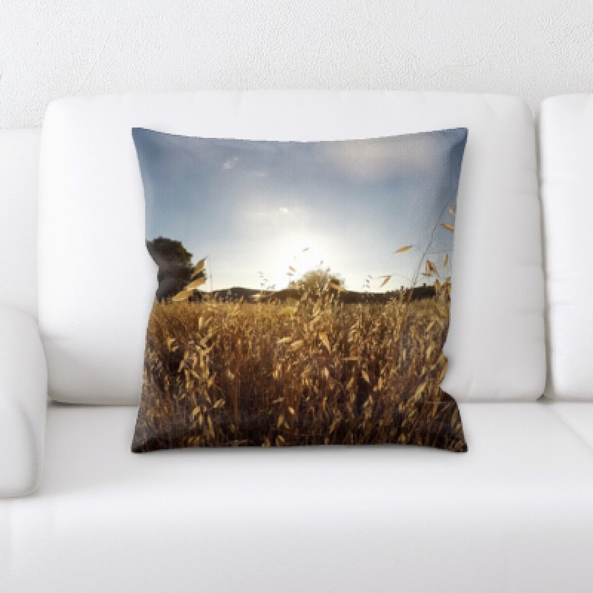 Go Pro (22) Throw Pillow