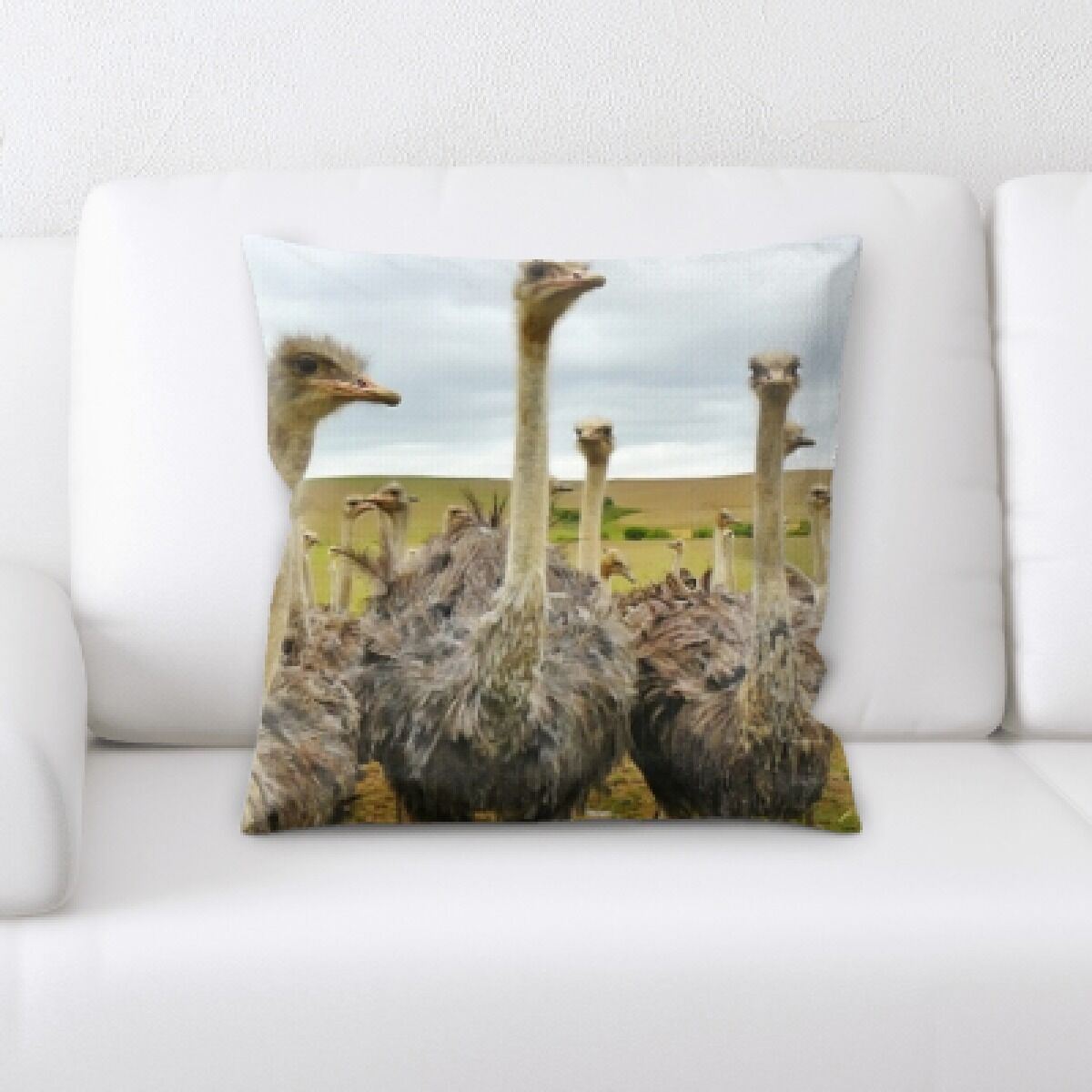 Ventura Ostrichs 1 Throw Pillow