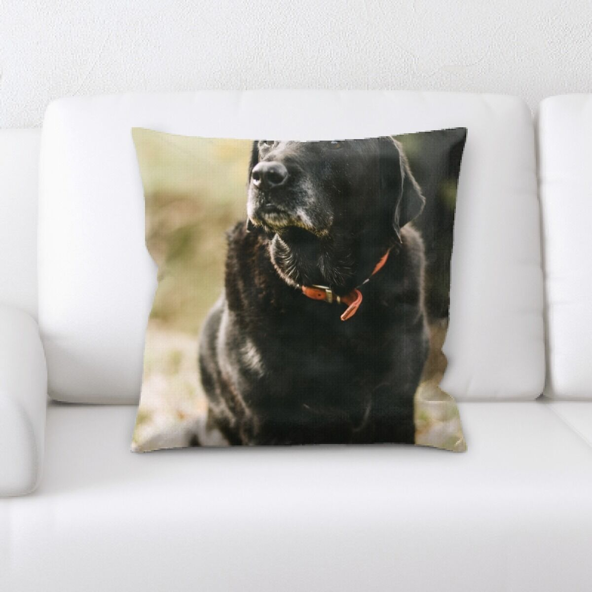 Portrait Style Photography (411) Throw Pillow