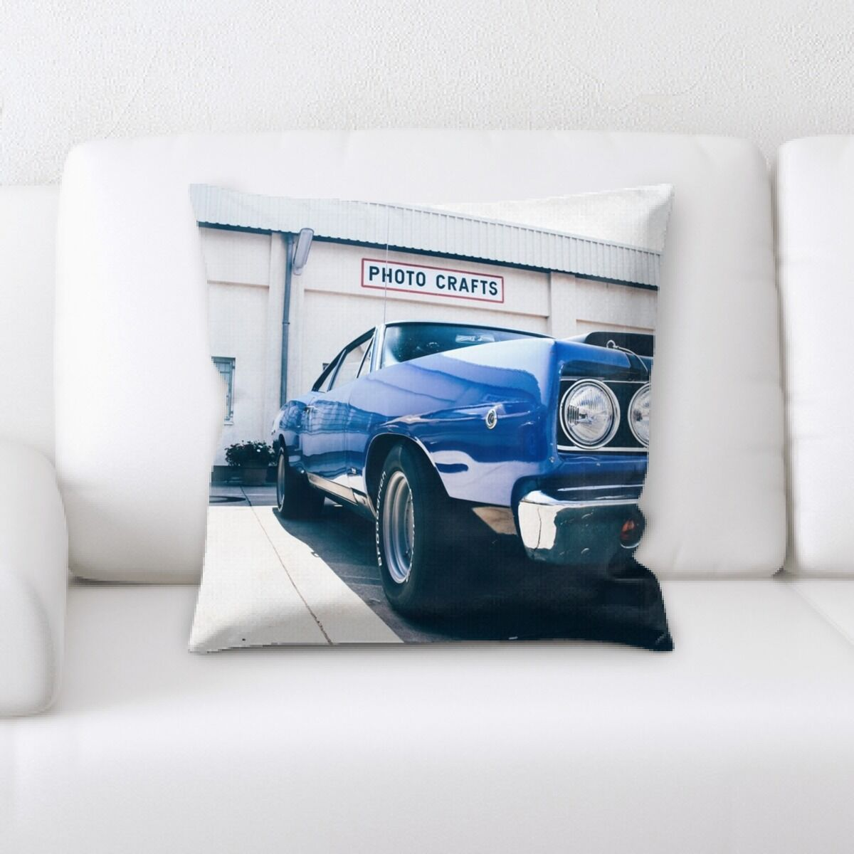 Portrait Style Photography (378) Throw Pillow