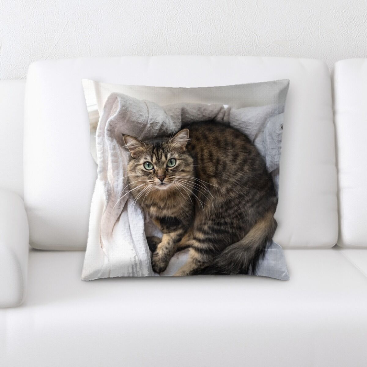 Landis (578) Throw Pillow