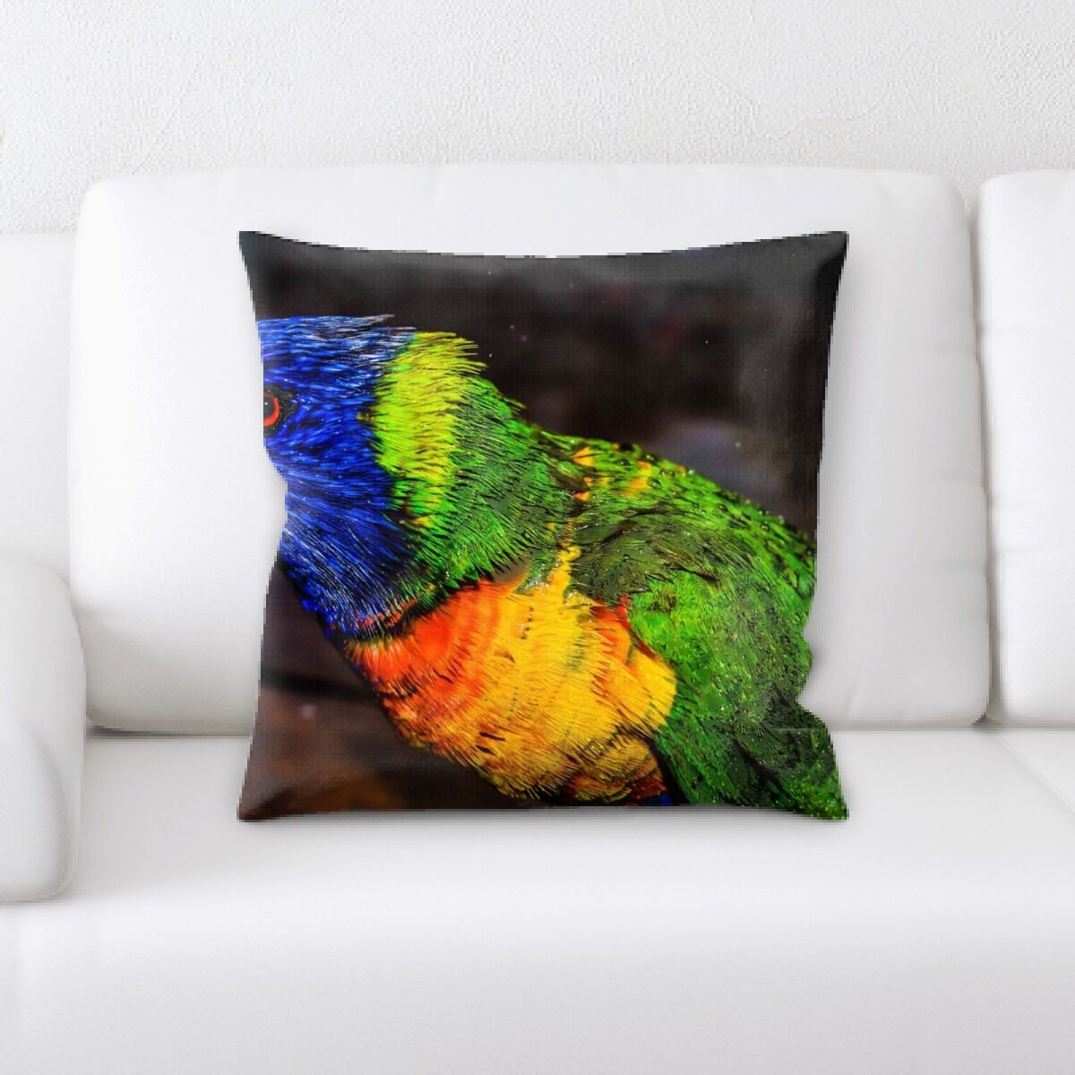 Rainbow (20) Throw Pillow