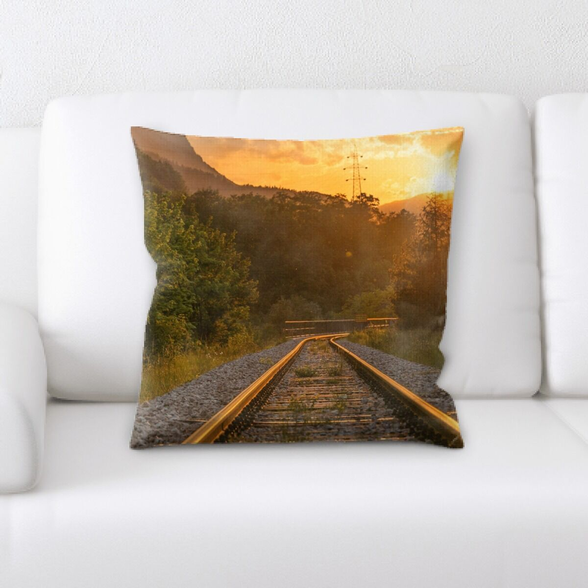 Train Experience (6) Throw Pillow