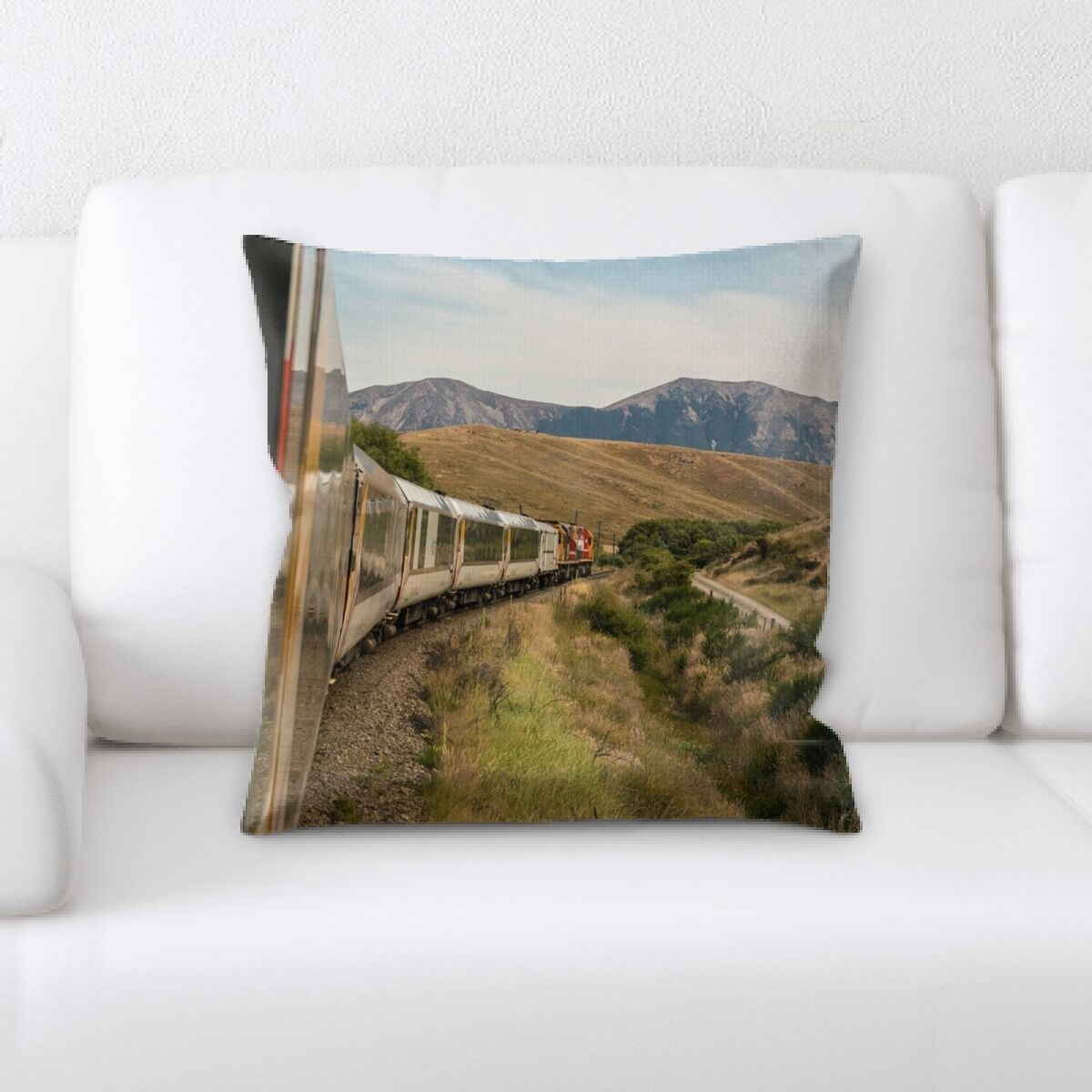 Train Experience (95) Throw Pillow