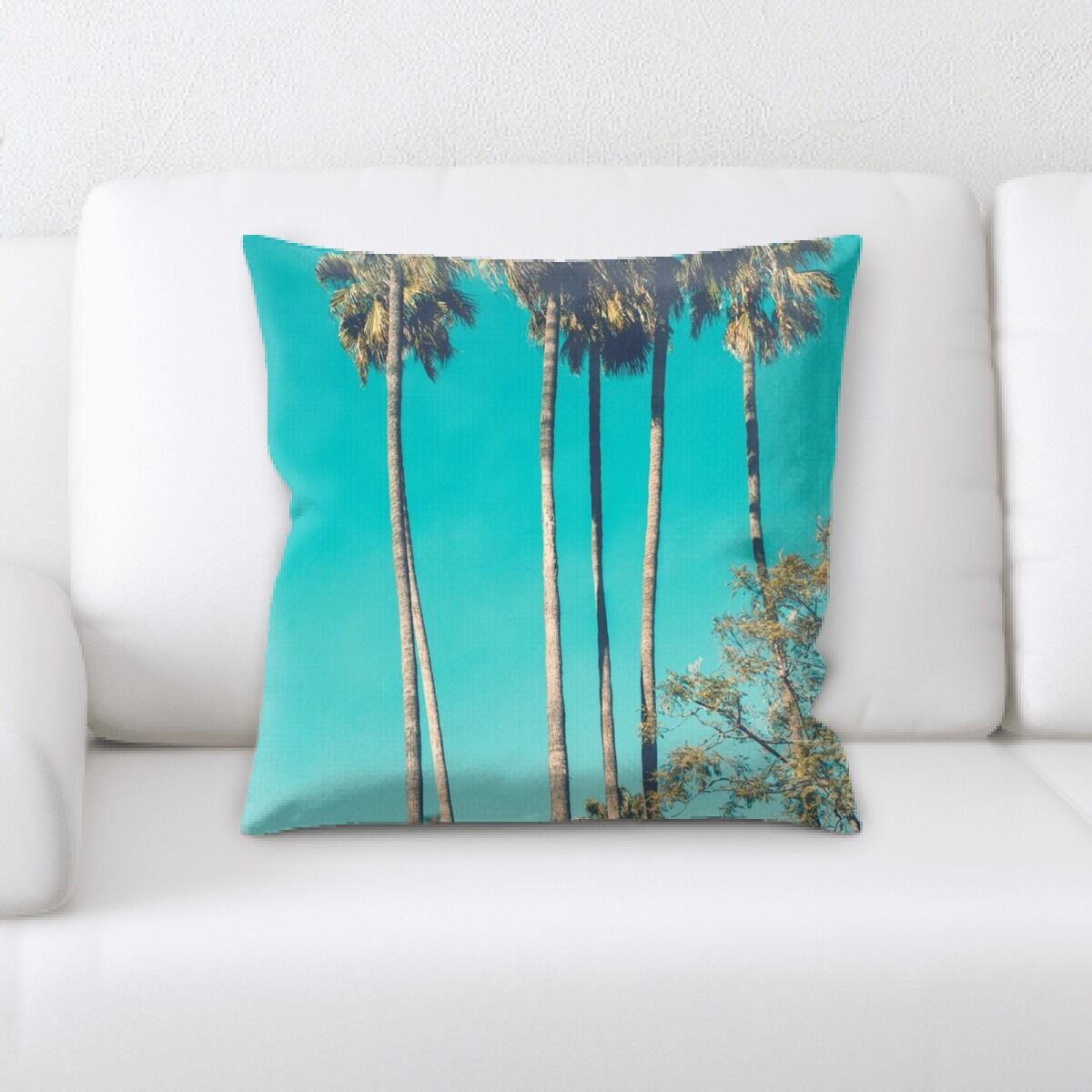 Alviso (146) Throw Pillow