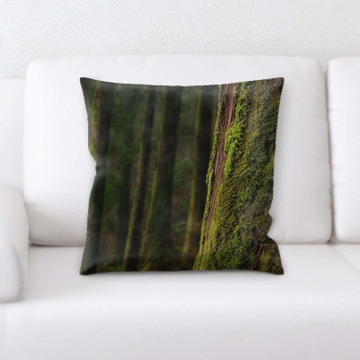 Donnelly (109) Throw Pillow