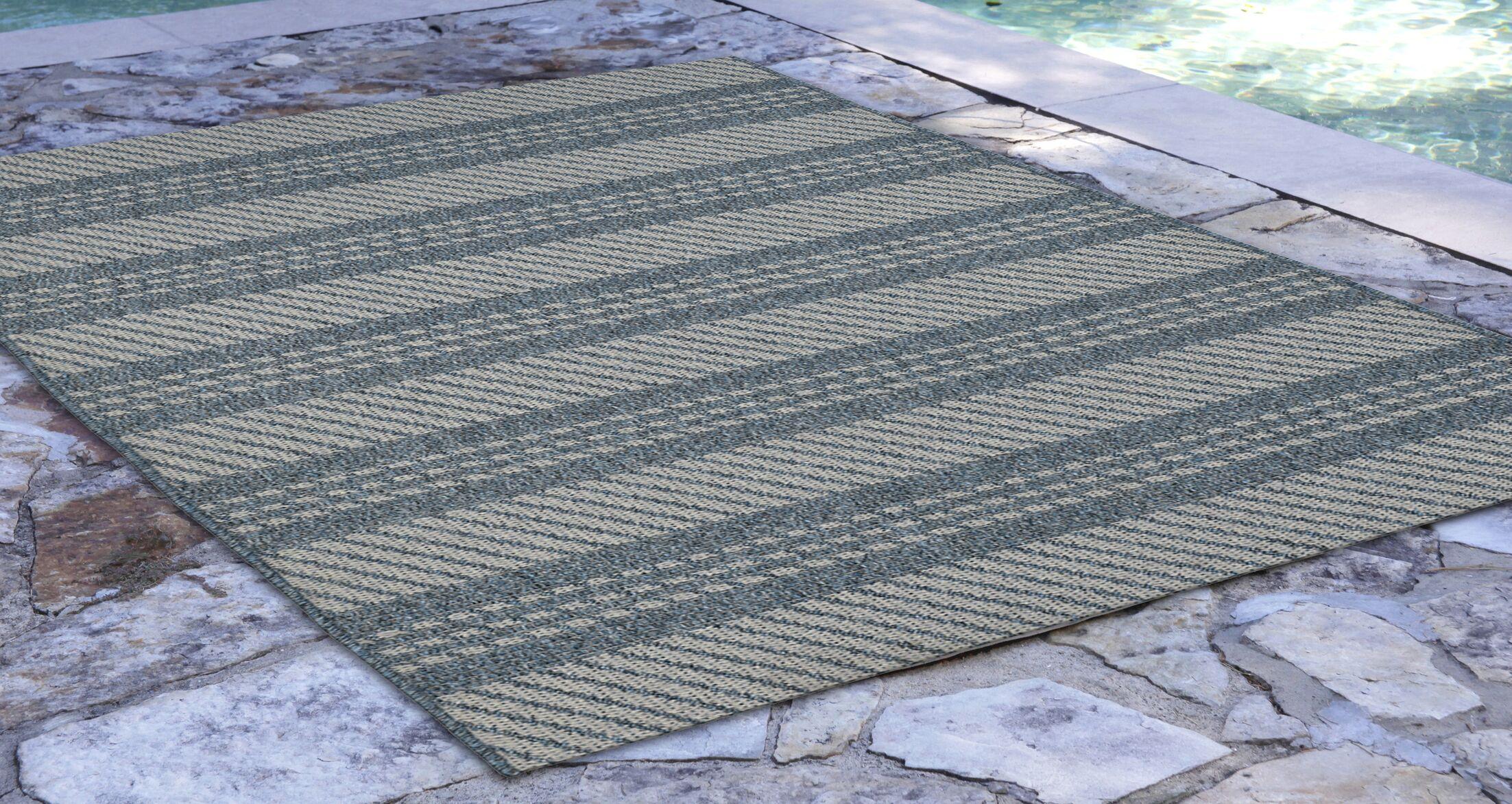 Amalia Blue Indoor/Outdoor Area Rug Rug Size: Rectangle 4'10