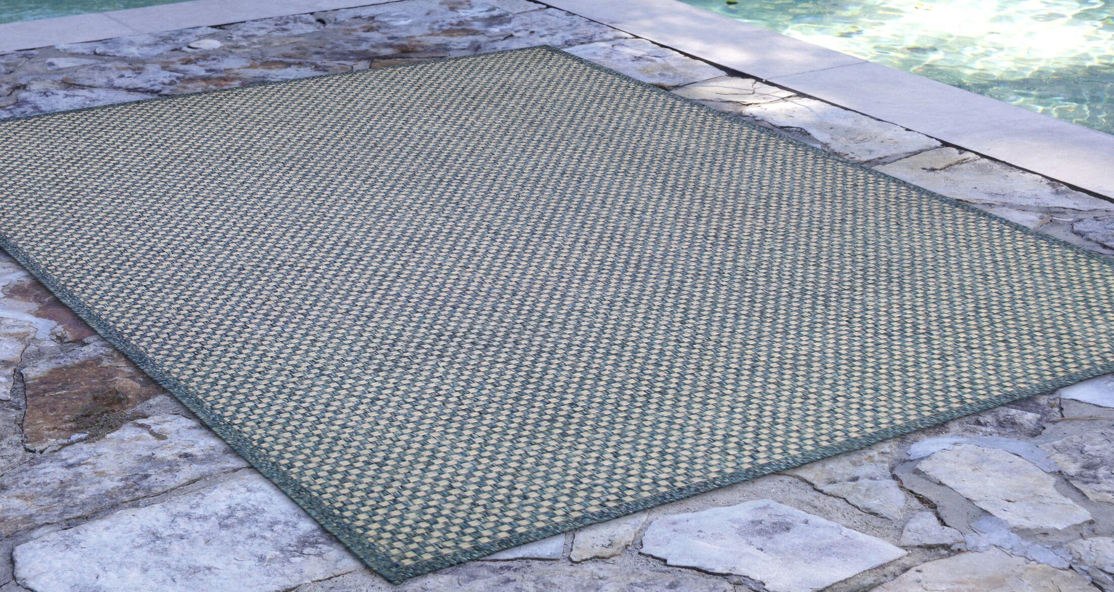 Greyson Blue Indoor/Outdoor Area Rug Rug Size: Rectangle 4'10